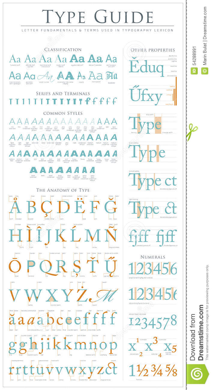 Type anatomy guide stock vector. Illustration of construction - 54288991
