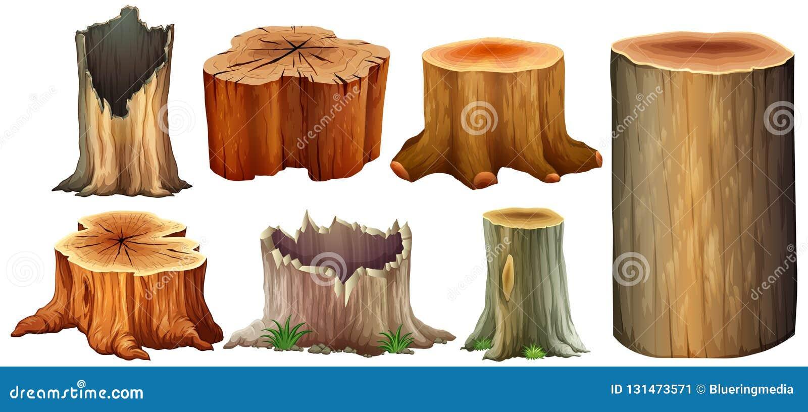 Type différent de tronçon d arbre