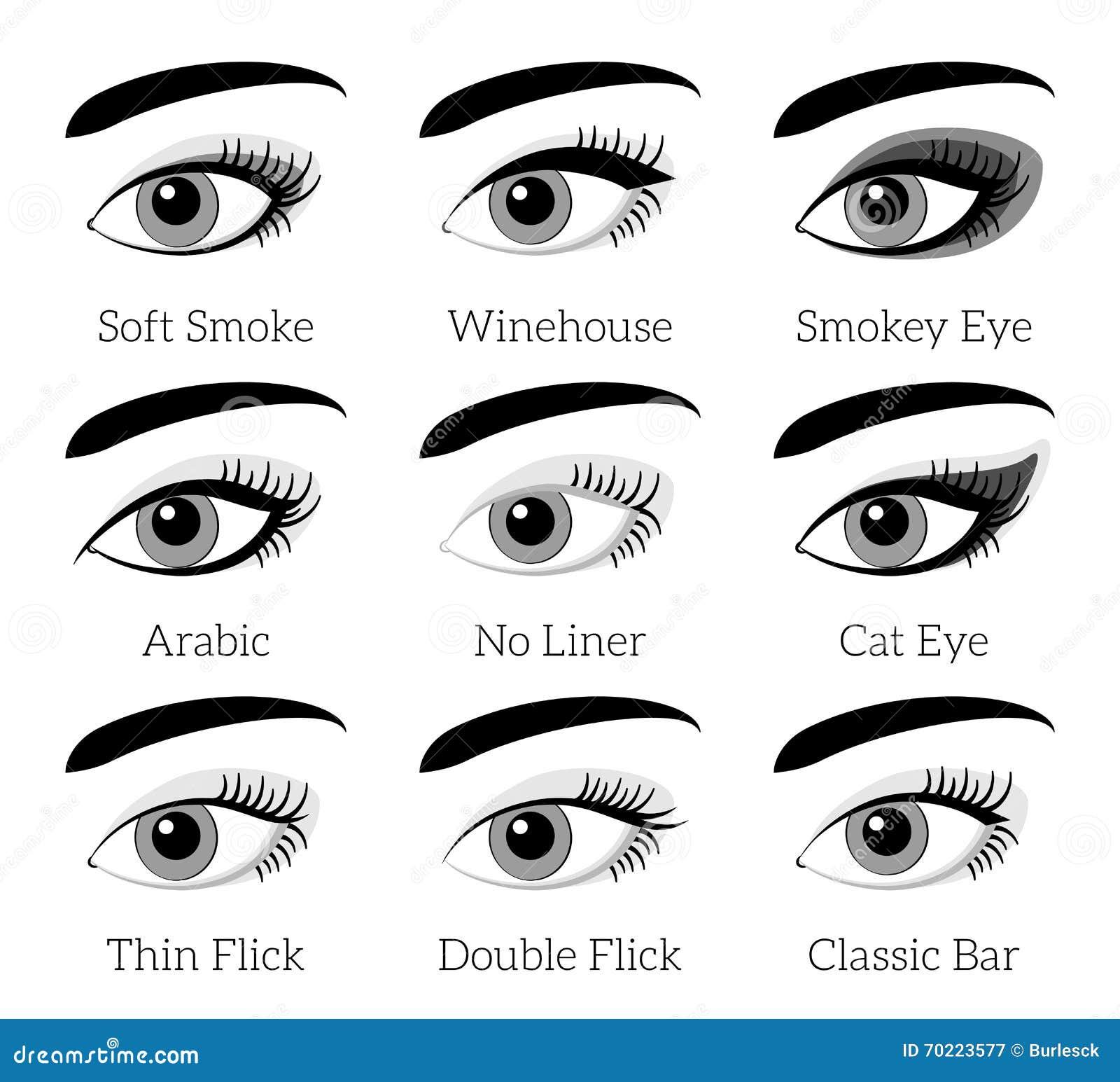types de maquillage d 39 oeil vecteur infographic illustration de vecteur image 70223577. Black Bedroom Furniture Sets. Home Design Ideas