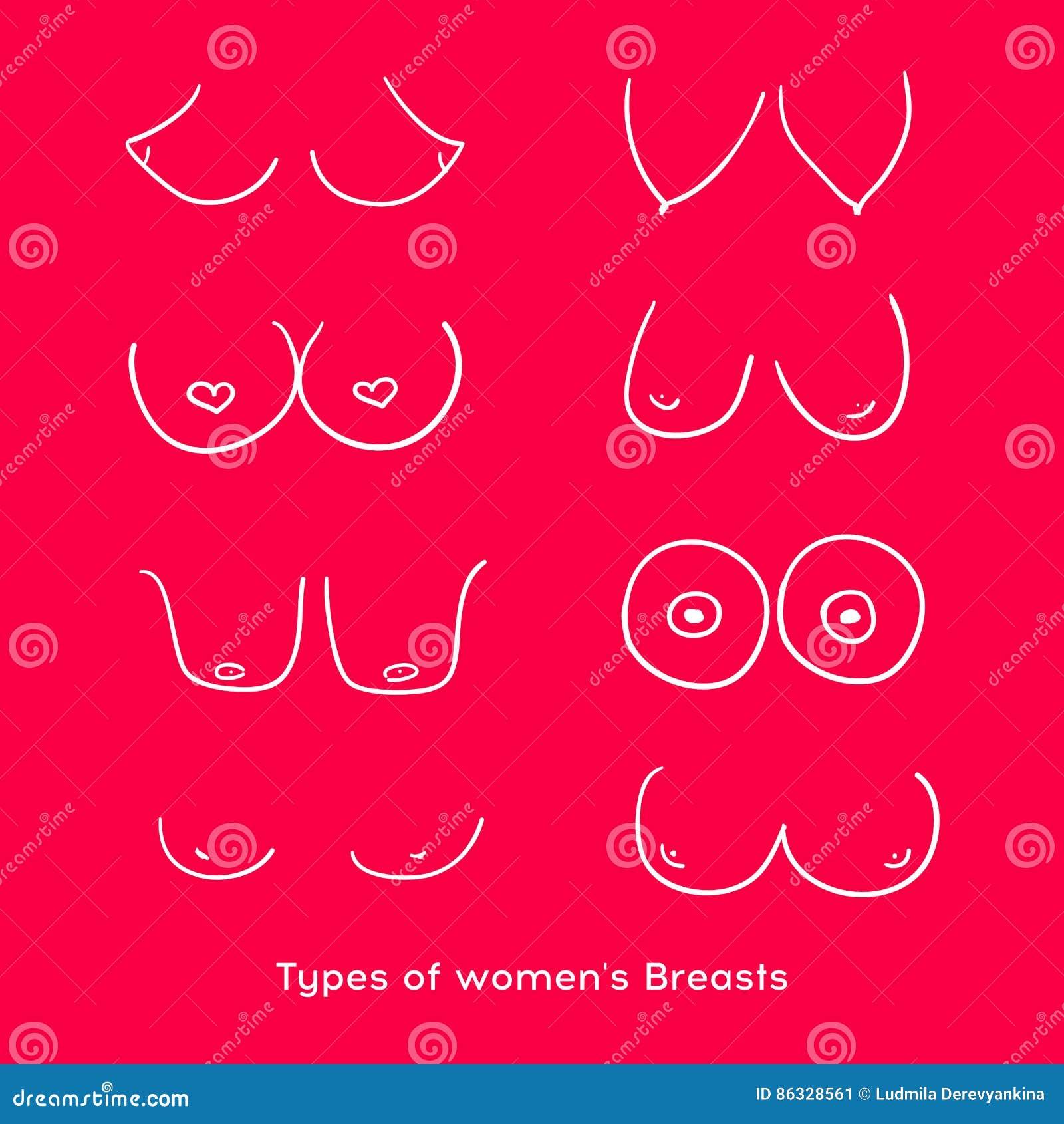 Types de photos de seins