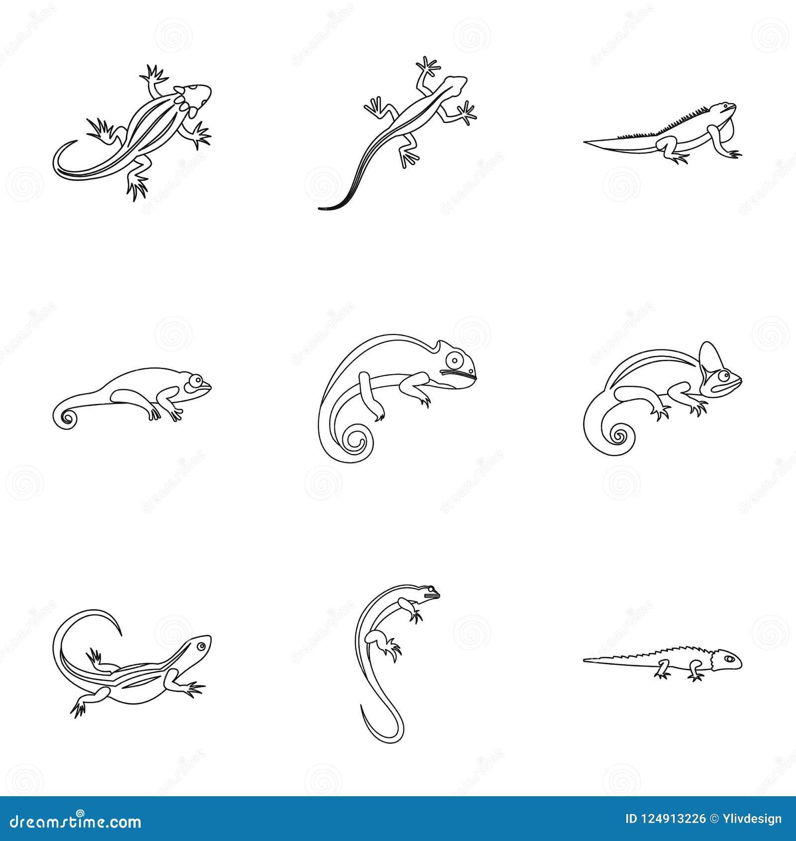 Types of iguana icons set, outline style