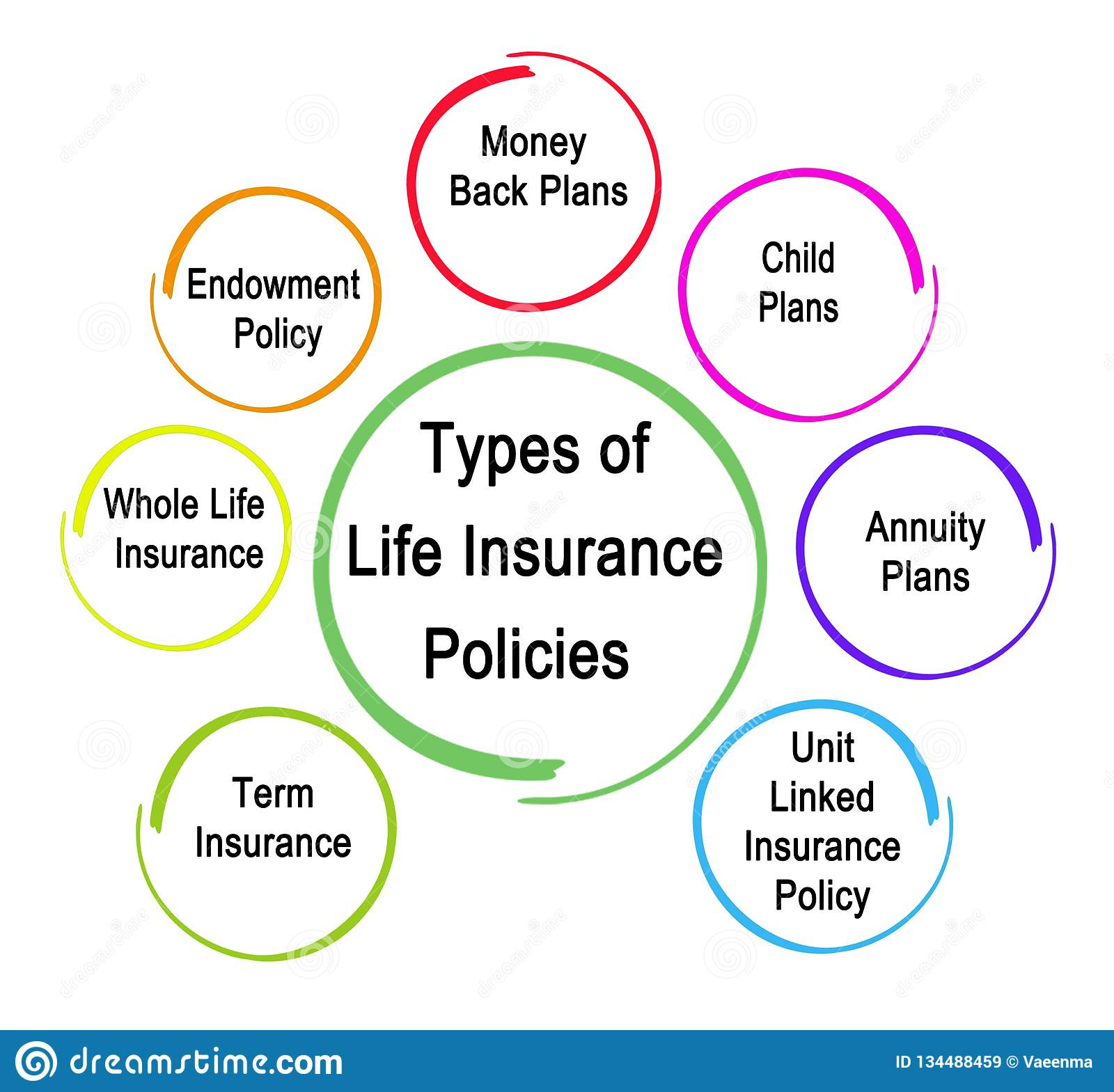 Types Of Life Insurance Policies Stock Illustration ...