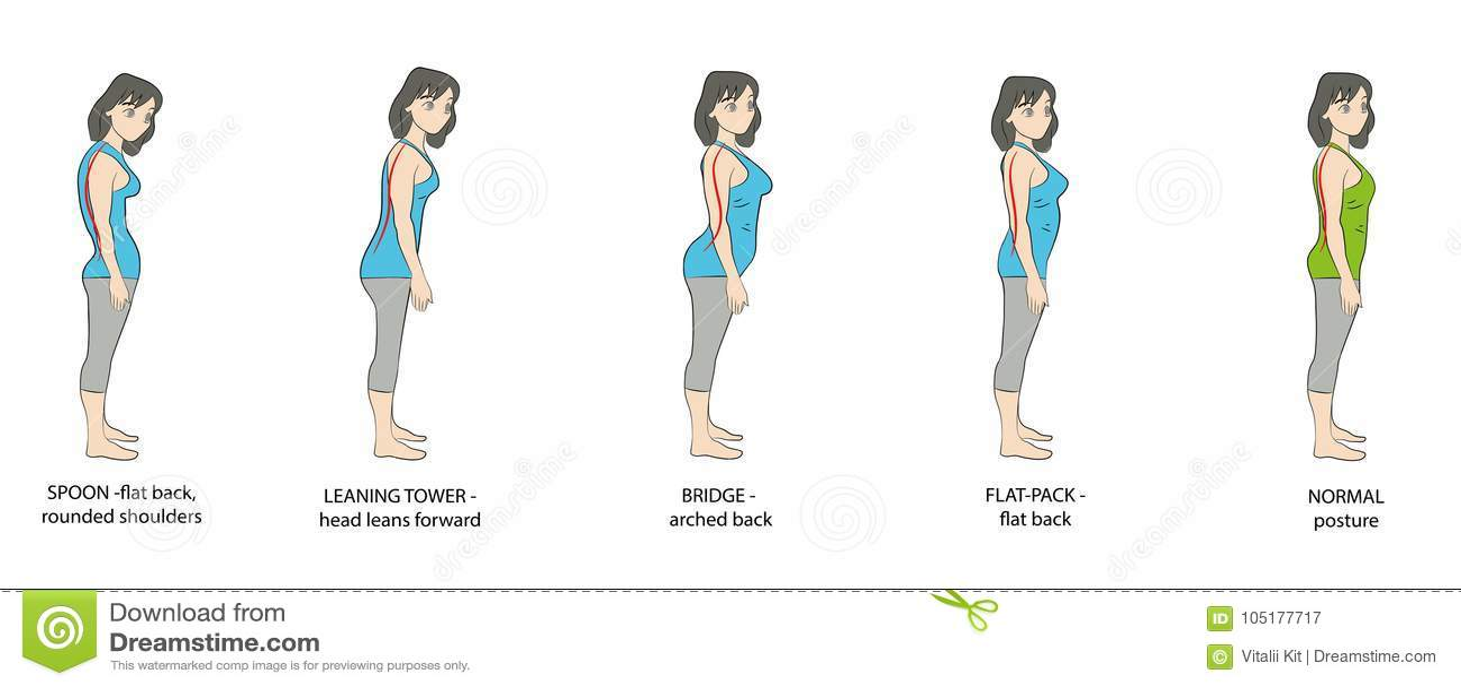 types of posture women  vector illustration  stock vector