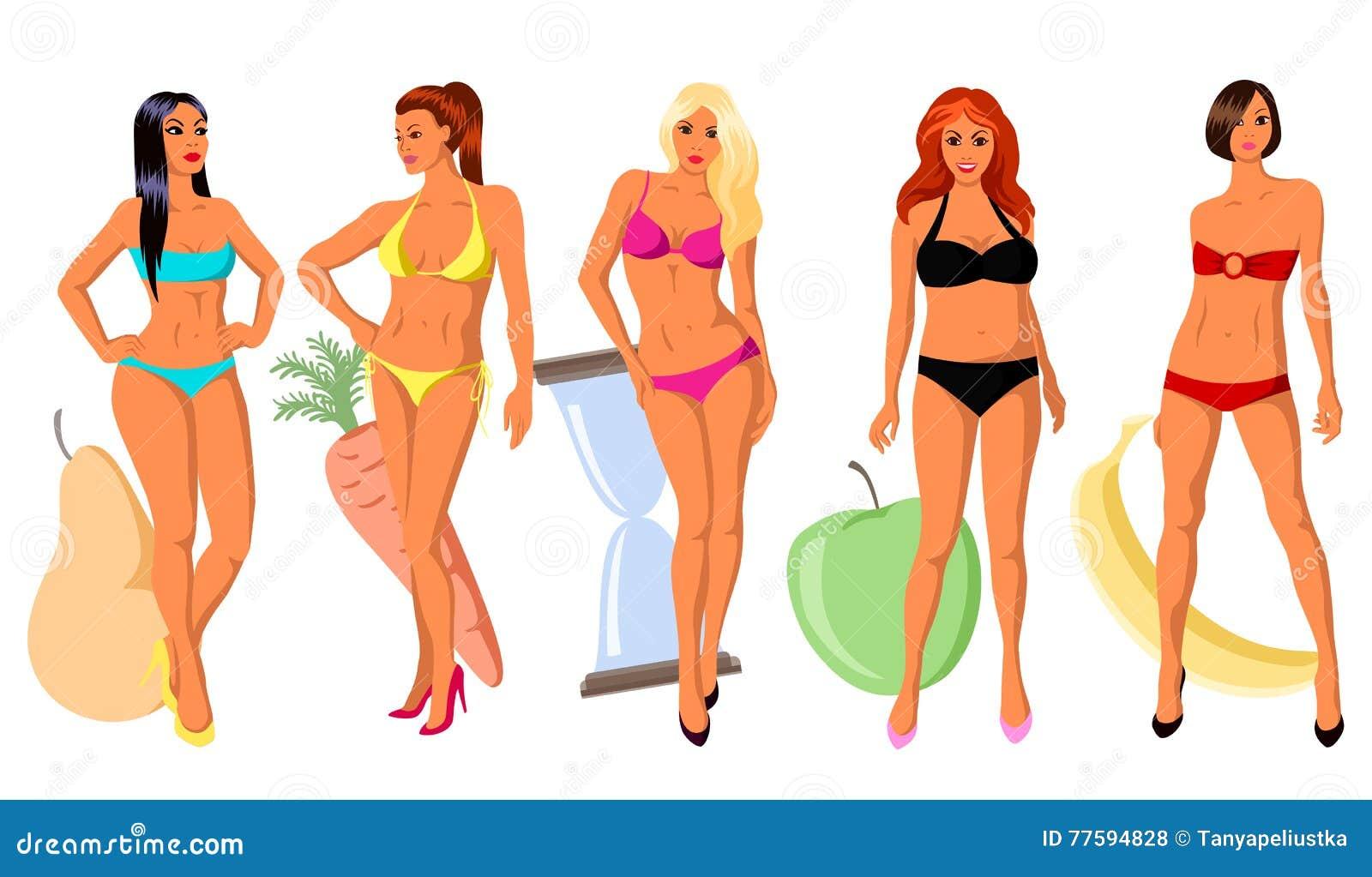 5 types of women's figure stock vector. Image of body ...
