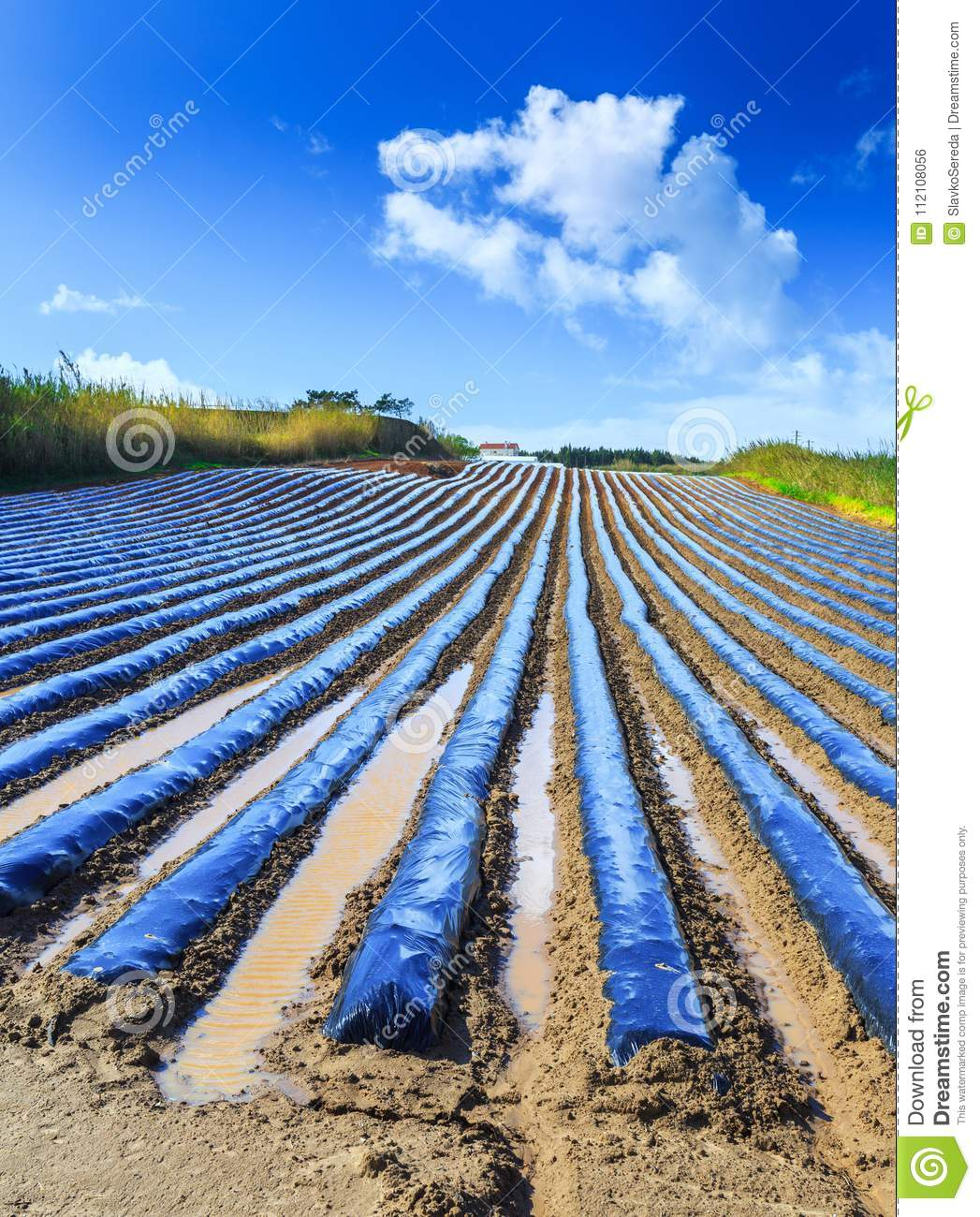 A typical agriculture technology of early spring cultivation of