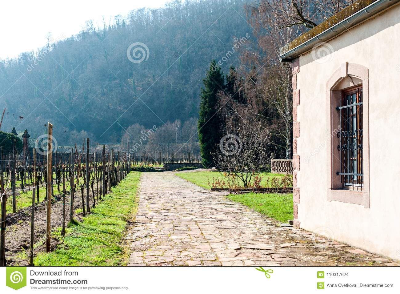 Typical French Chateau Historical Wine Region Vineyards In