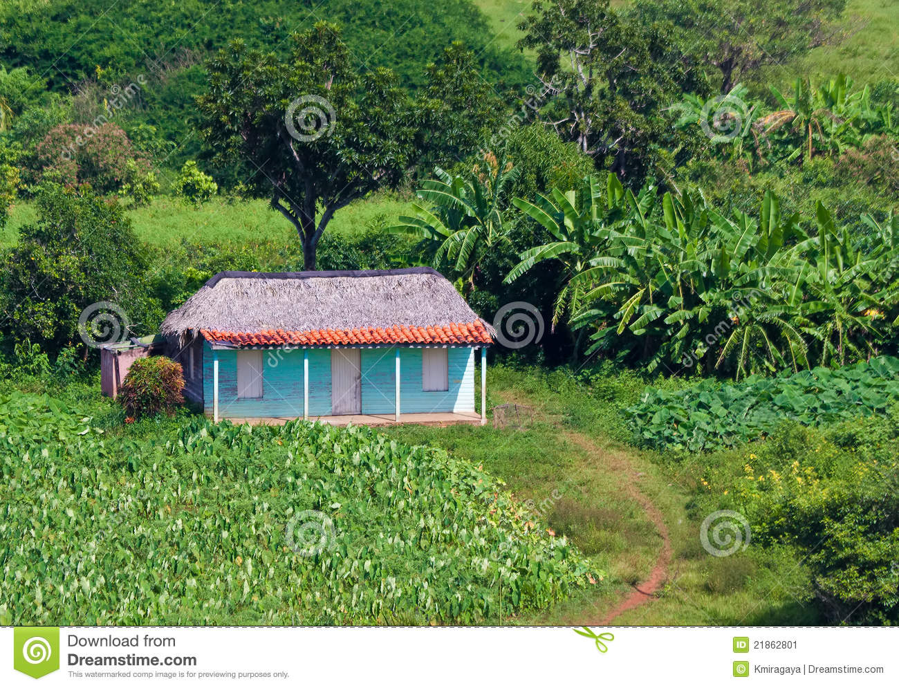 Typical House In The Cuban Countryside Stock Image Image