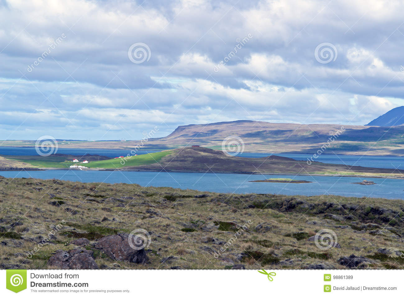 Typical Iceland morning seascape with farms in a fjord