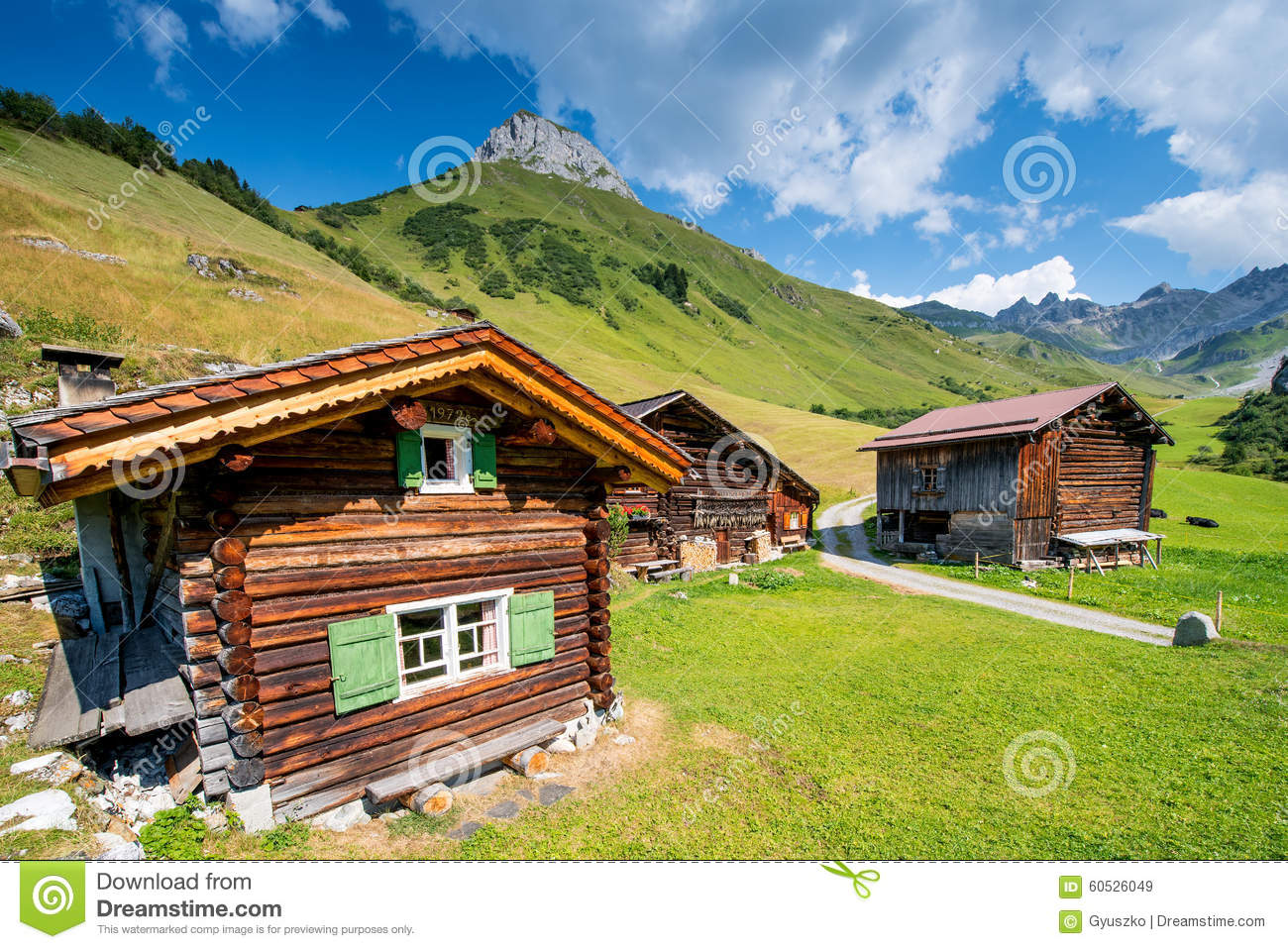 Typical swiss chalet stock photo image 60526049 for Building a chalet home
