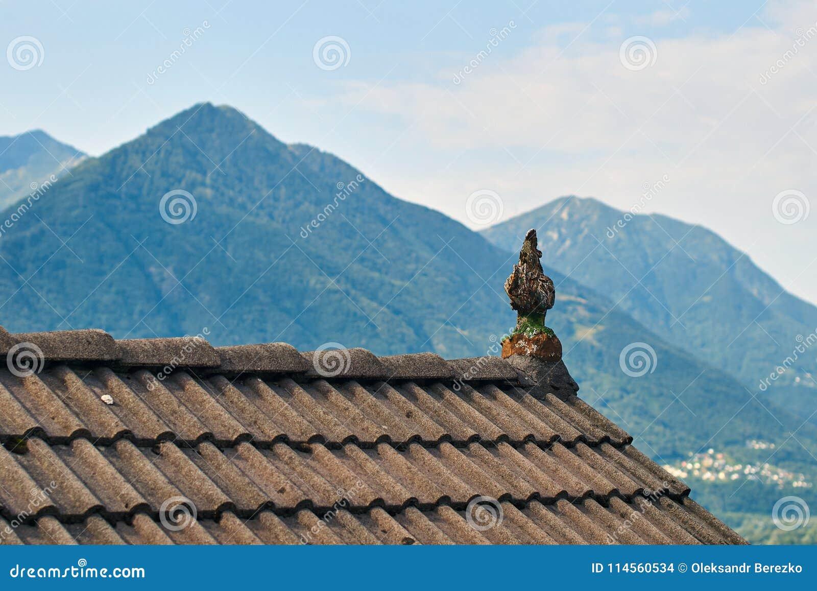 Typisch dak van een traditioneel landelijk Zwitsers huis