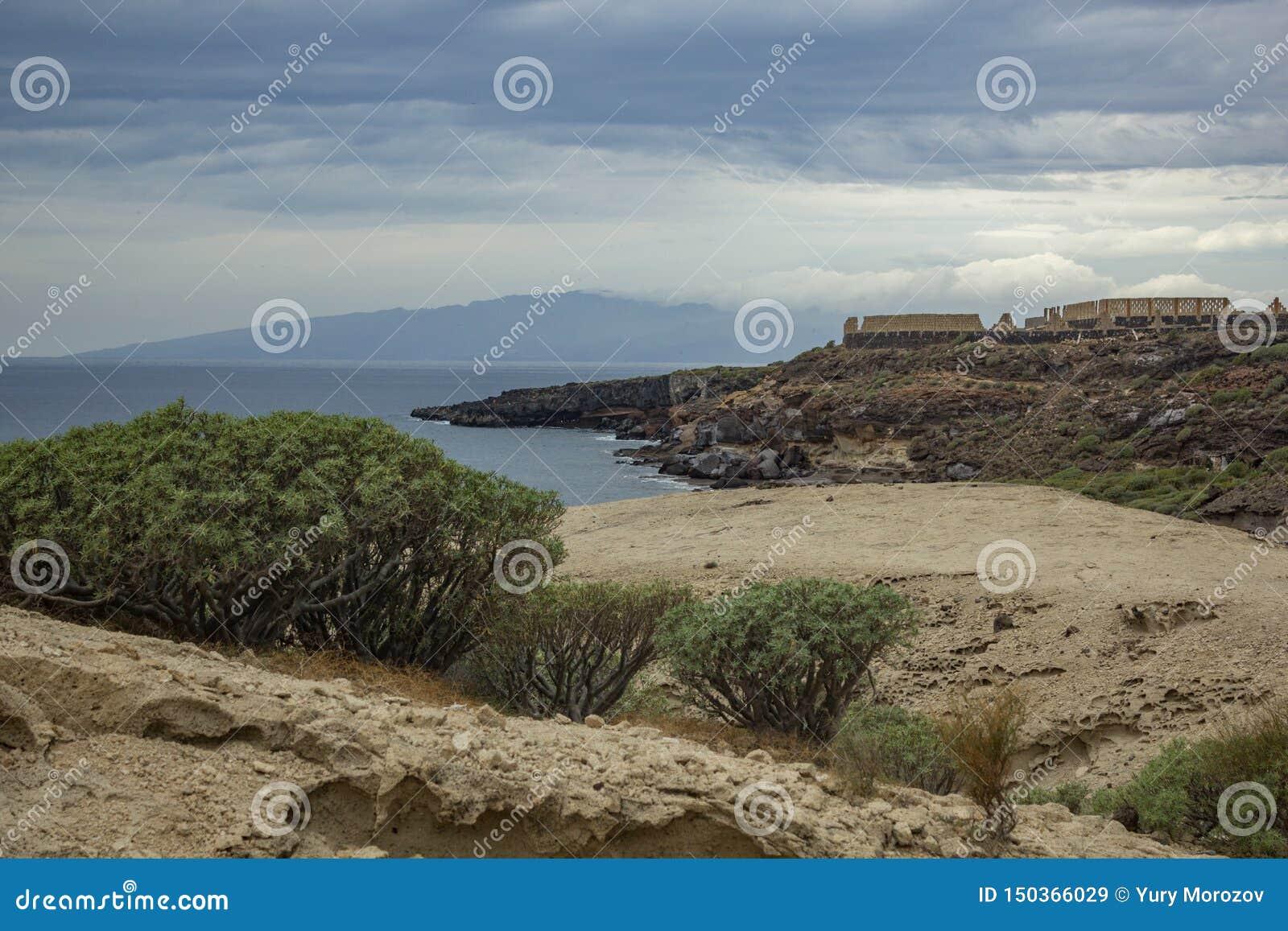 Typisk kanjon som omger vid den canarian balsamiferaen för endemiskmilkweedEuphorbia i Adeje, söder av Tenerife, kanariefågelöar