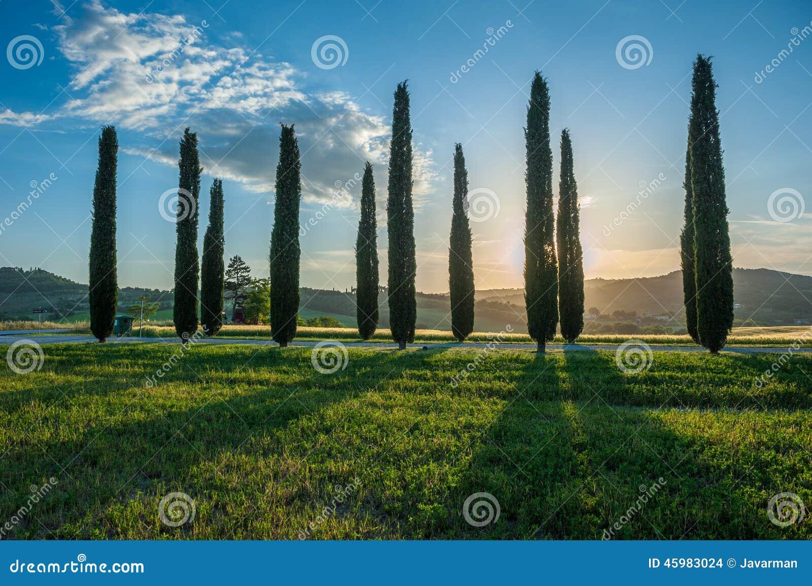 Typisk tuscan liggande