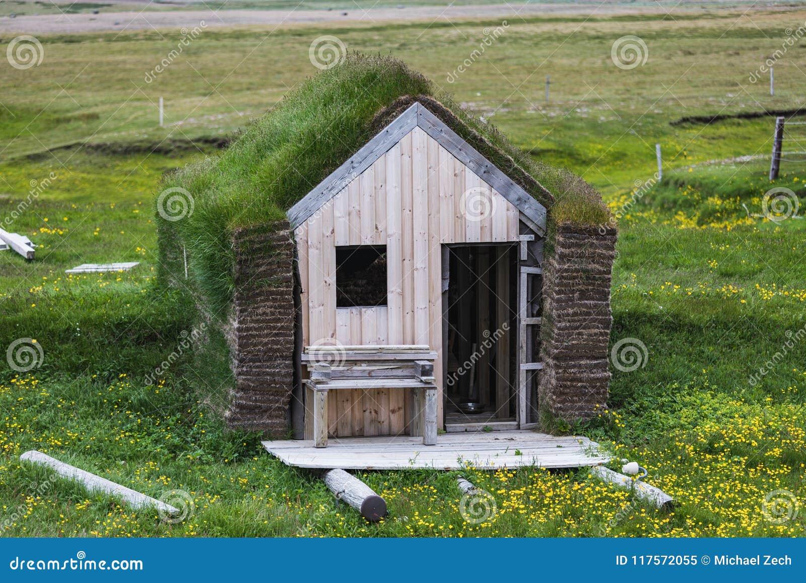 Typiska gröna hus med grastaket i Island