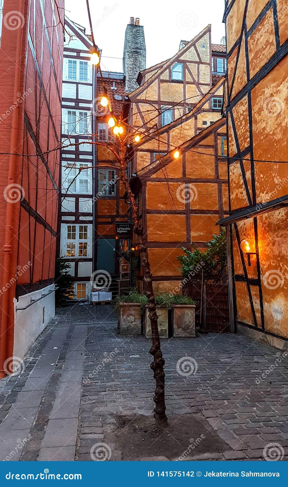 Typowa Duńska kapitałowa ulica z starej architektury kolorowymi domami, Kopenhaga, Dani
