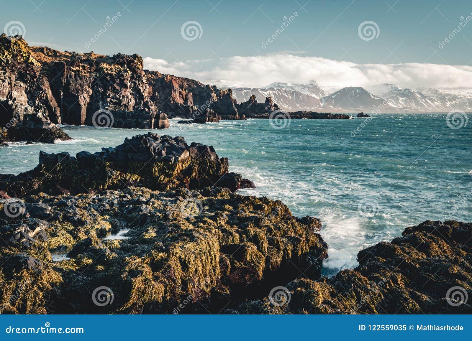 Typowy Islandzki wschodu słońca zmierzchu falezy krajobraz przy Arnarstapi terenem w Snaefellsnes półwysepie w Iceland