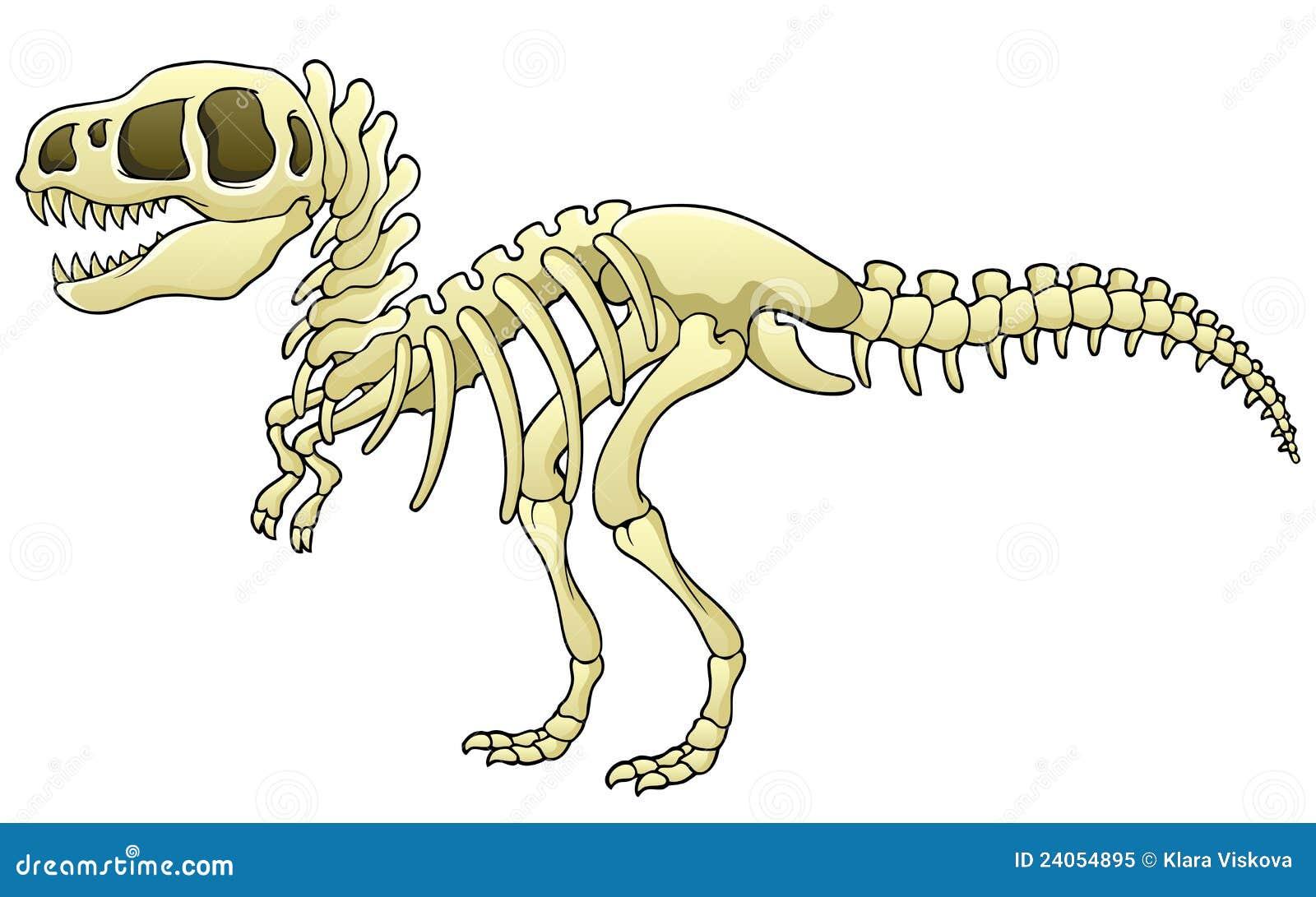 Tyrannosaurus Skeleton Image Stock Vector