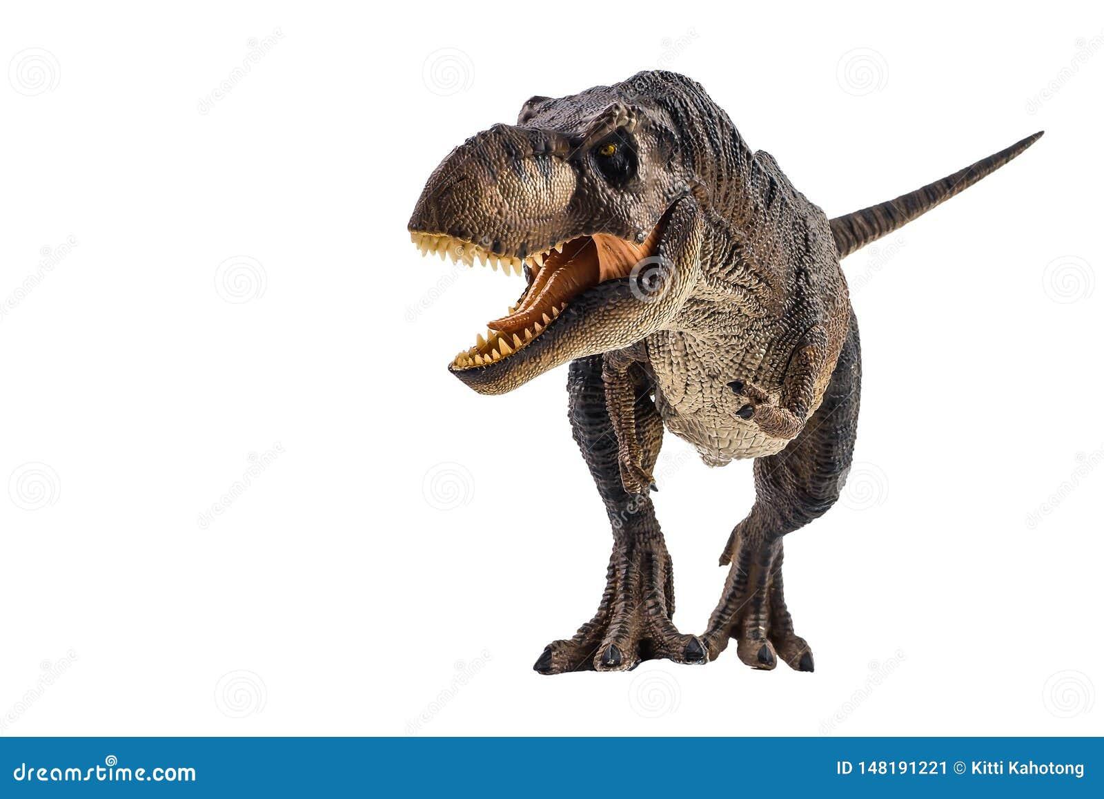 tyrannosaurus trex dinosaurier auf weiem hintergrund