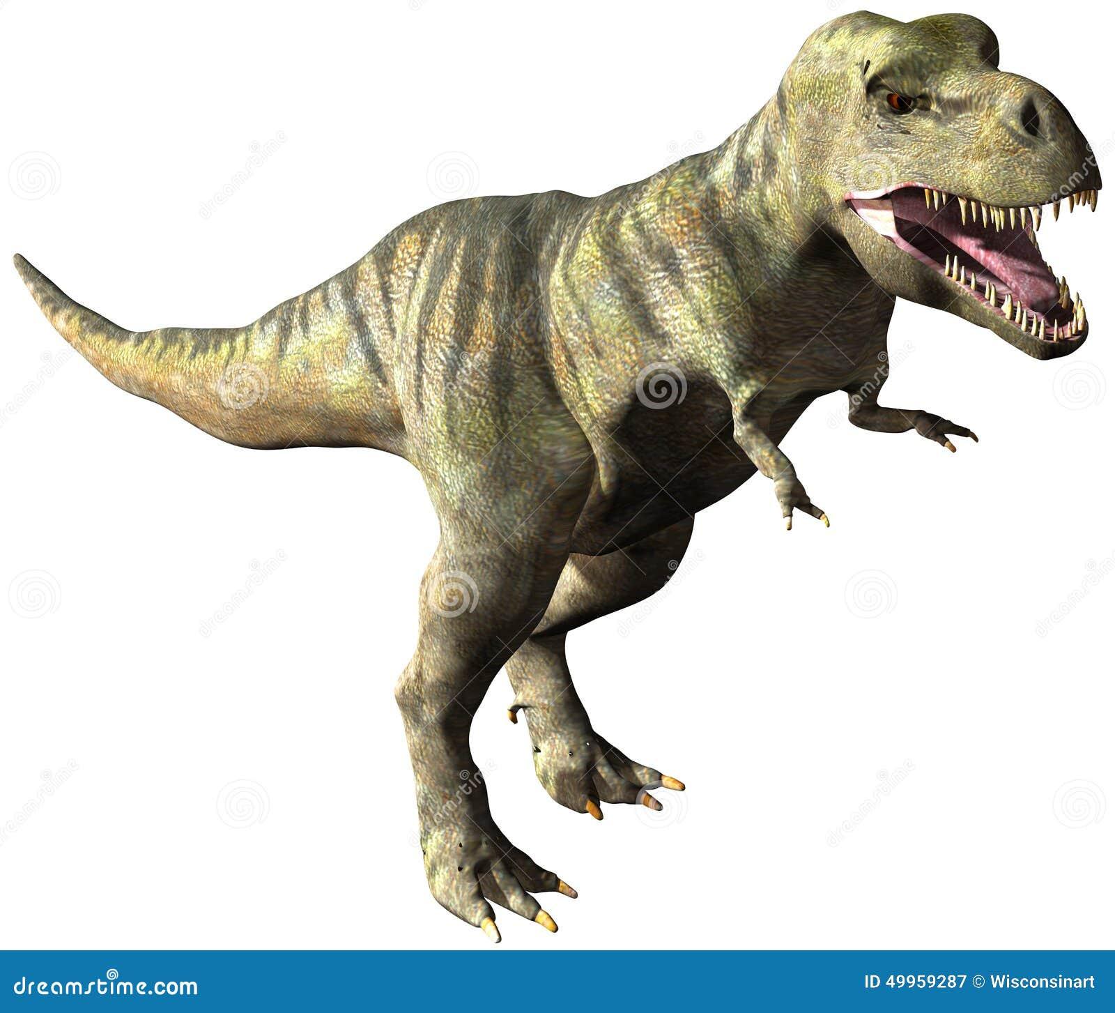 Tyrannosaurus Rex Dinosaur Illustration Isolated Stock ... - photo#16