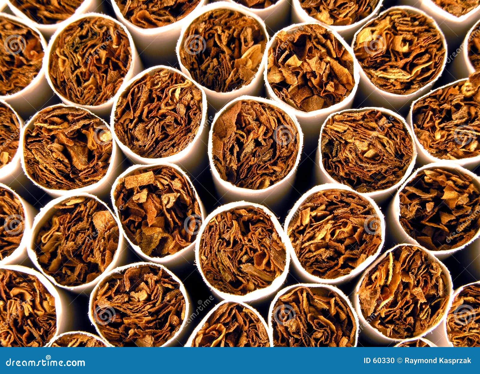Tytoń tło