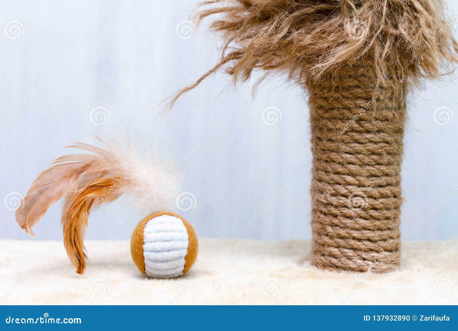 Używać kota chrobota poczta z obdartymi częściami i zabawkarska round piłka z piórkami