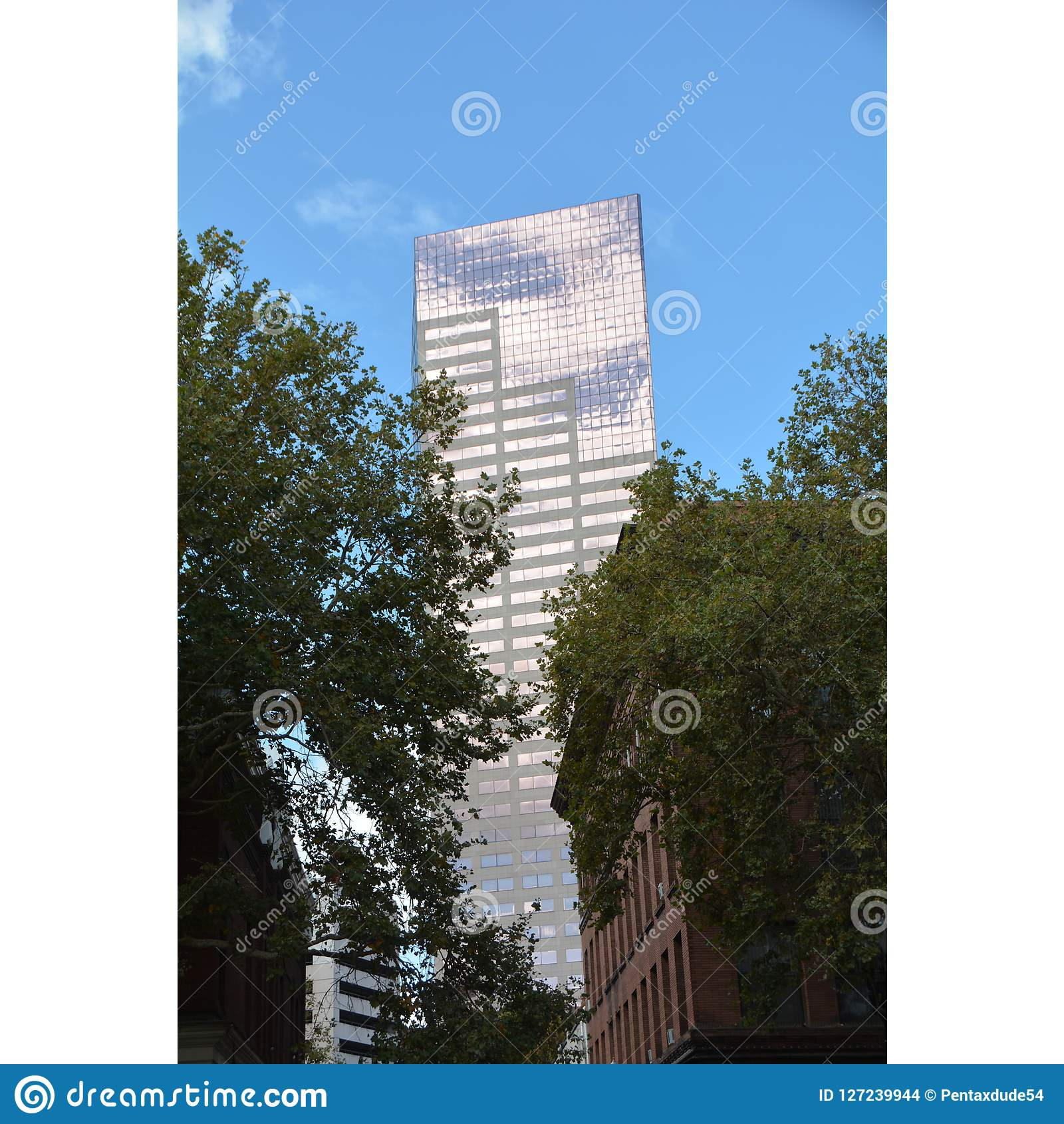 `Big Pink` with blue sky and trees in Portland, Oregon