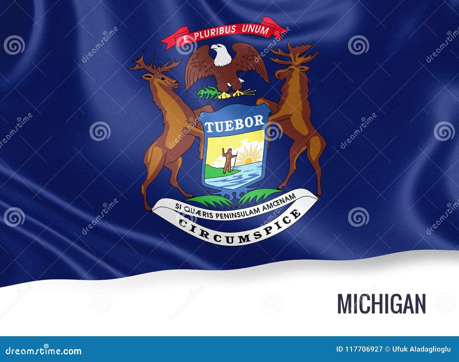 U S Bandera De Michigan Del Estado Stock de ilustración ...