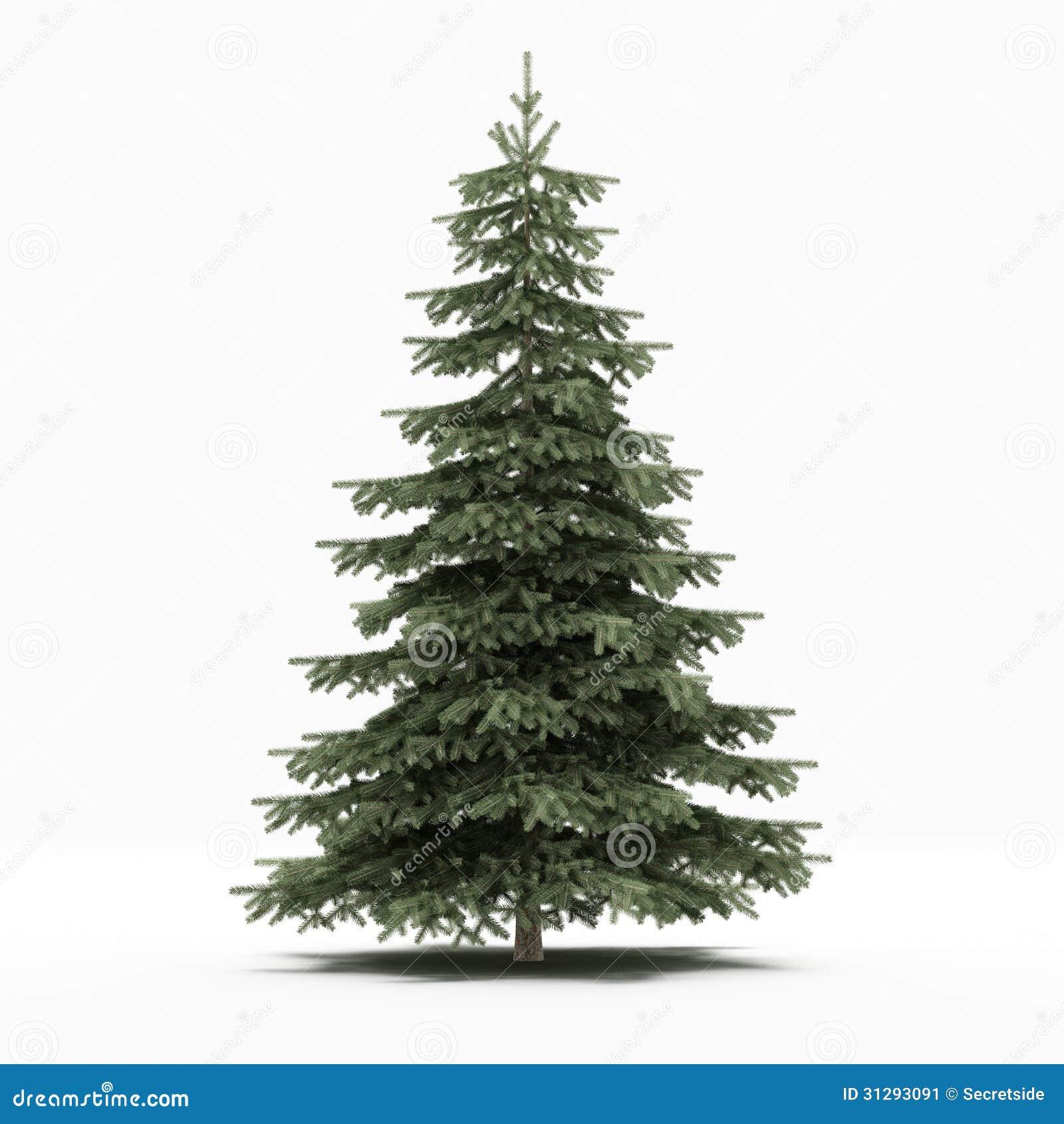 u00c1rbol de pino stock de ilustraci u00f3n ilustraci u00f3n de pine tree vector free pine tree vector free
