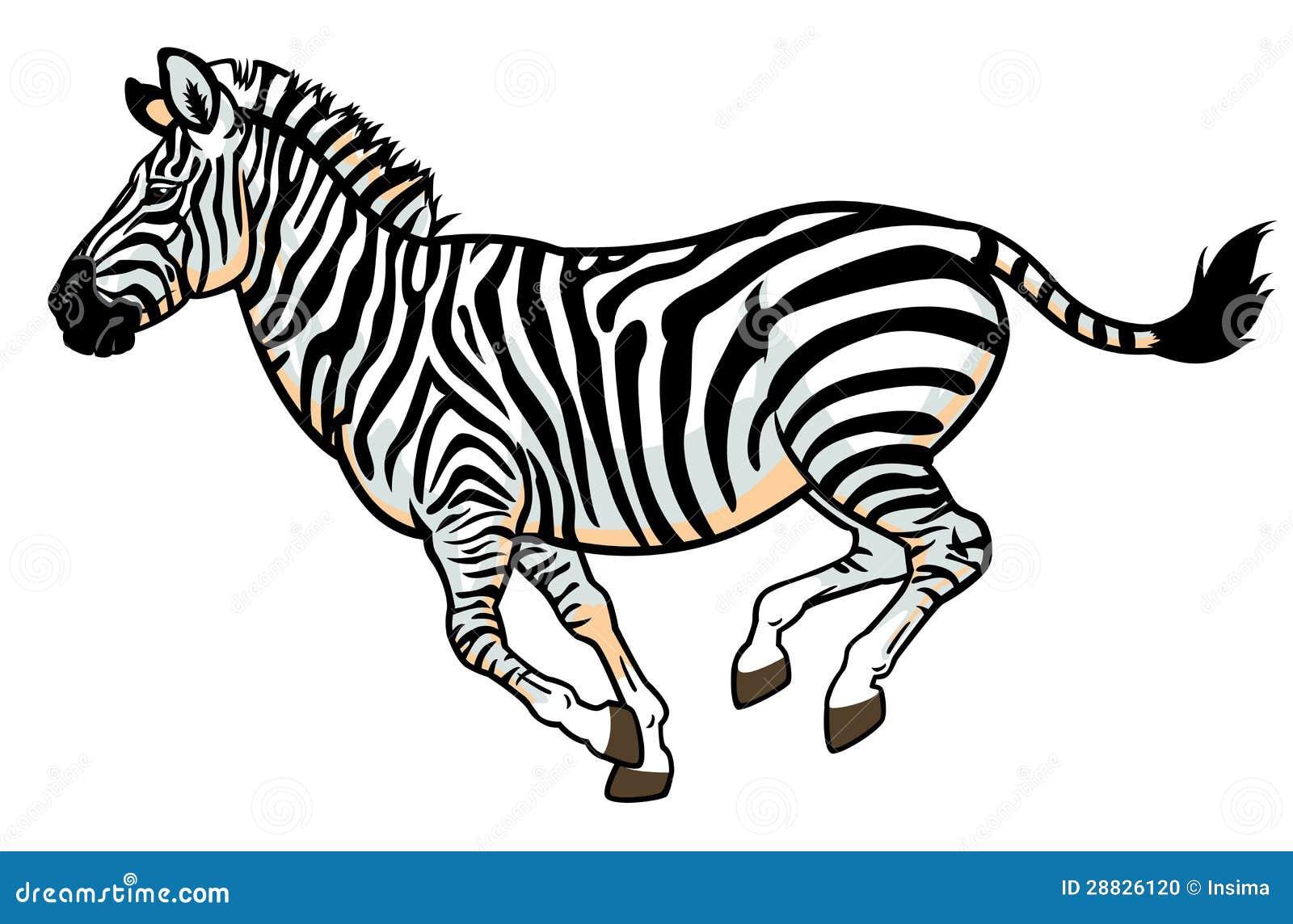 u5728 u767d u8272 u7684 u6591 u9a6c  u5e93 u5b58 u7167 u7247  u56fe u7247 28826120 zebra victor vasarely zebra vector images