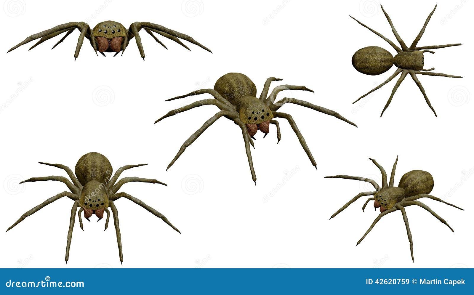竹子,叶子,葫芦,蜘蛛的翡翠挂件分别象征什么意义?图片
