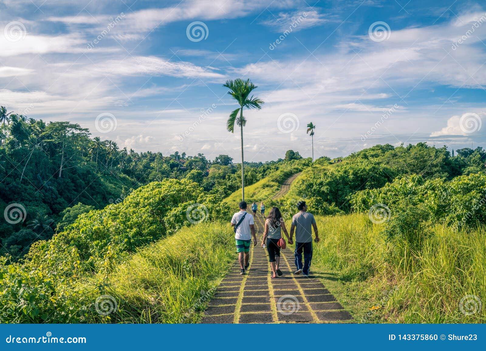 Ubud, Bali, Indonésia - em janeiro de 2019: turista que toma uma excursão guiada da caminhada do cume em Ubud