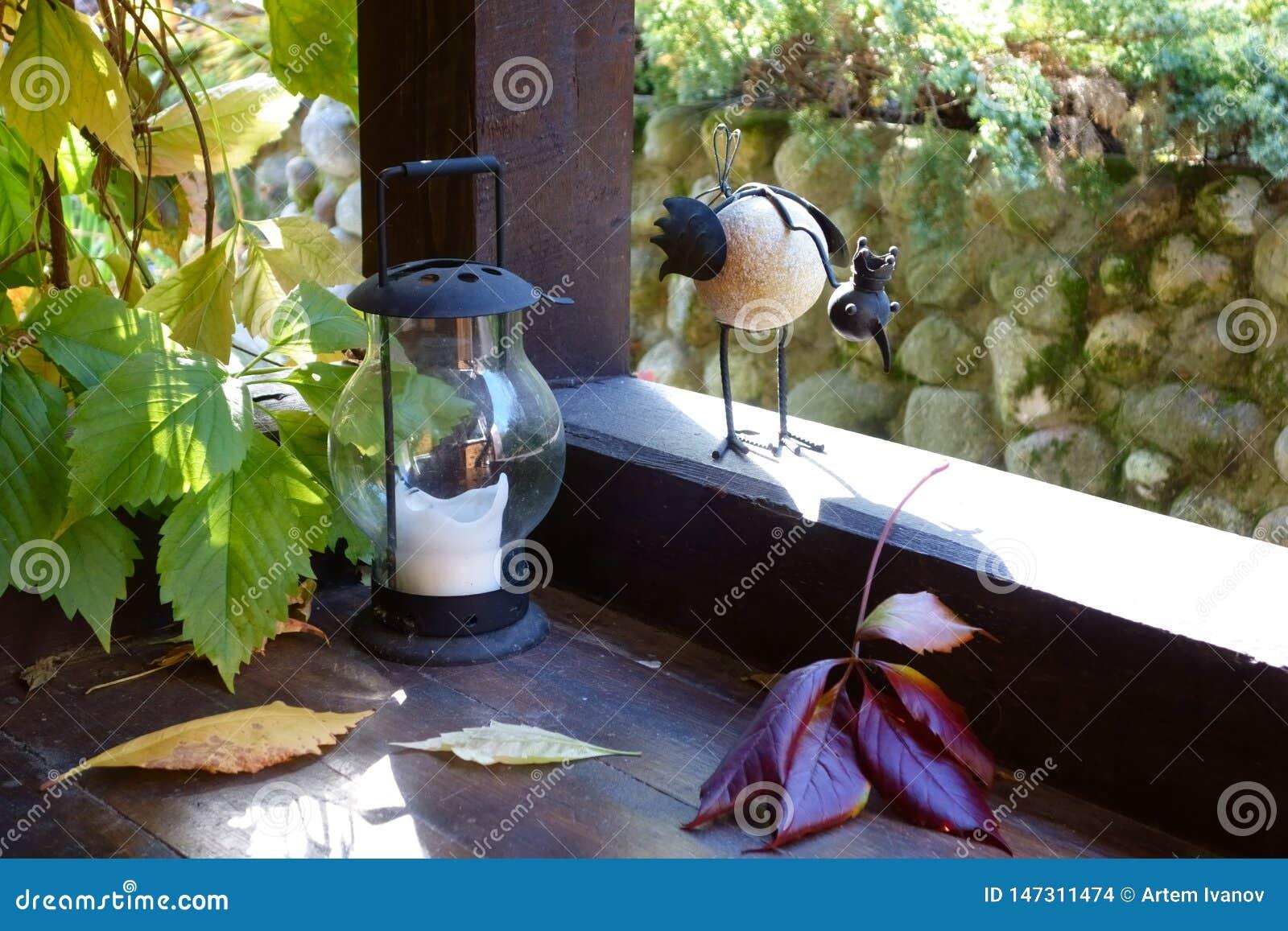 Uccello decorativo curioso con una corona su una veranda di legno