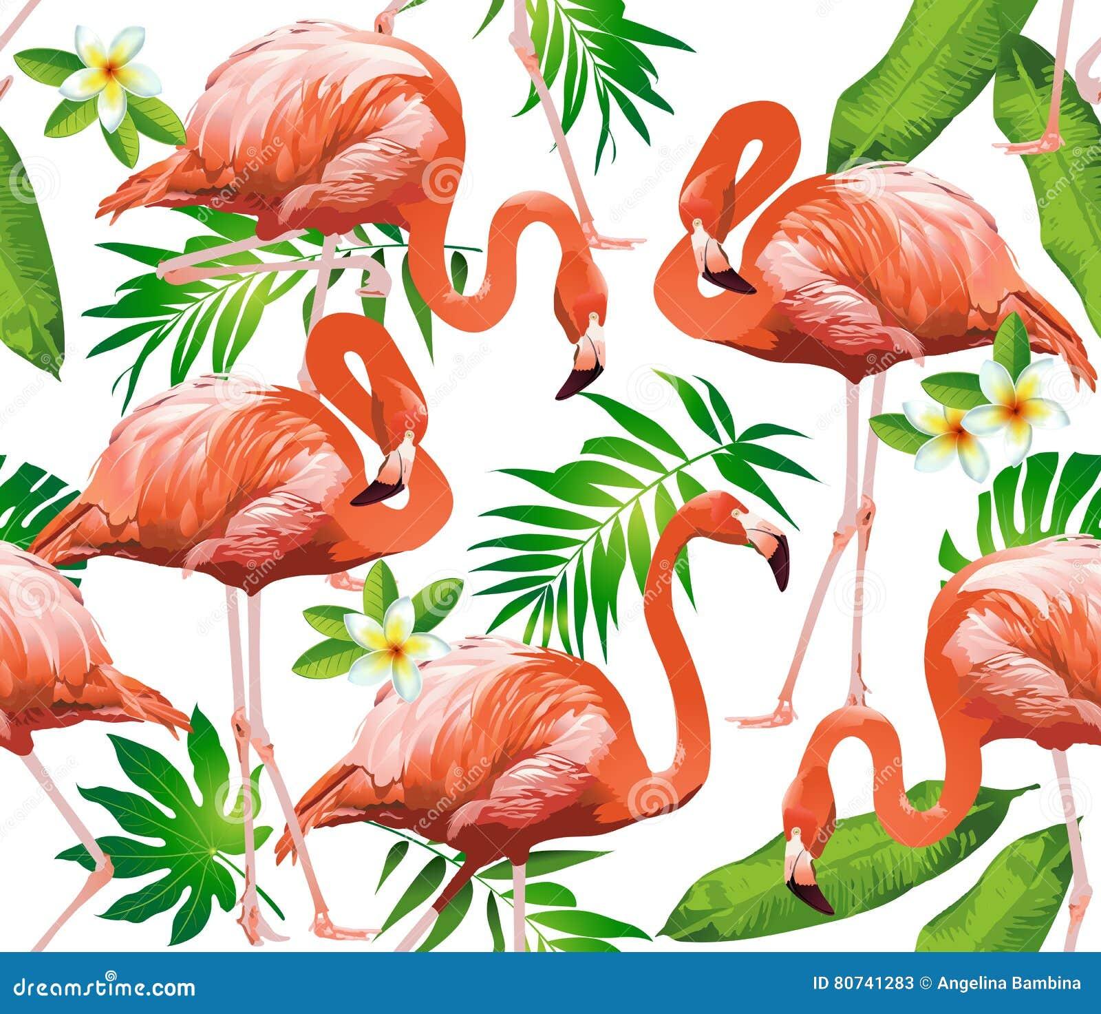 Uccello del fenicottero e fiori tropicali - modello senza cuciture
