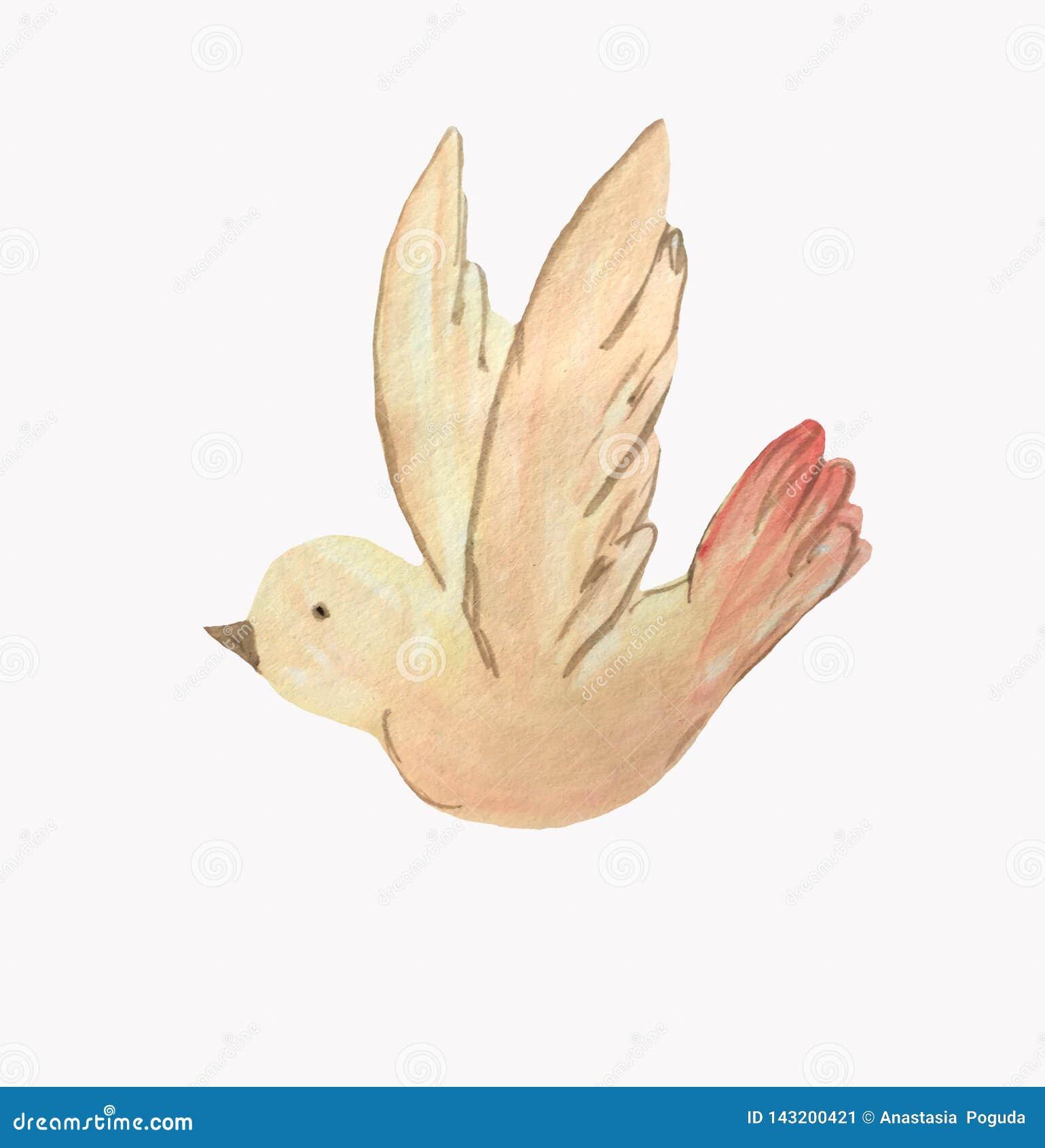 Uccello giallo del fumetto su un fondo bianco