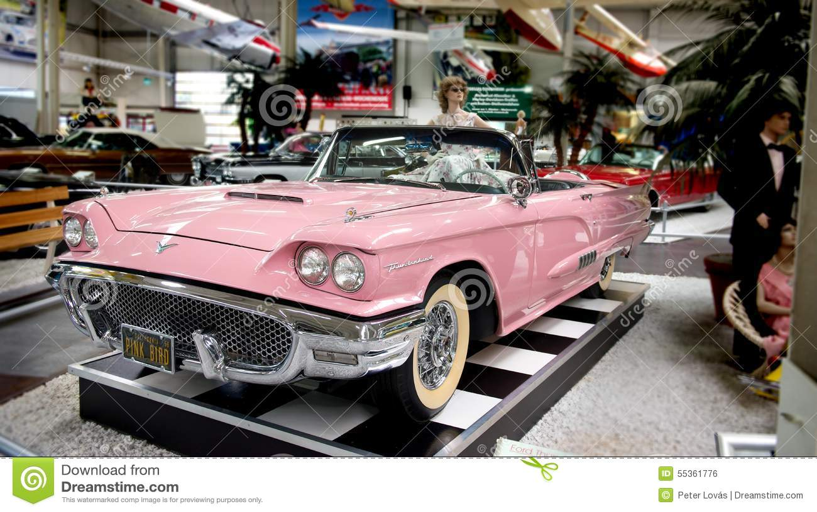 Uccello rosa - museo automobilistico Sinsheim di sogno americano