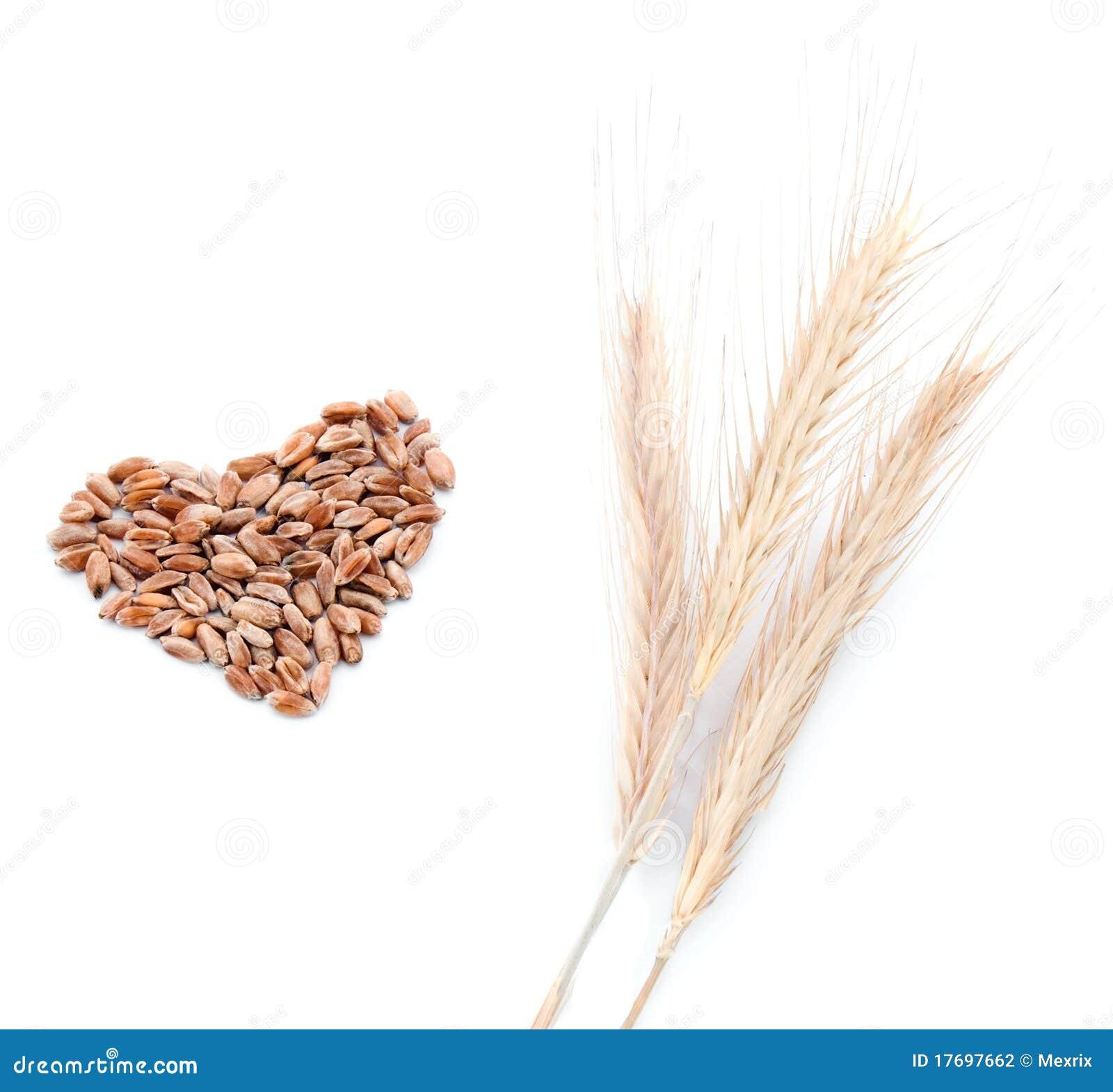 Ucho serca wheats