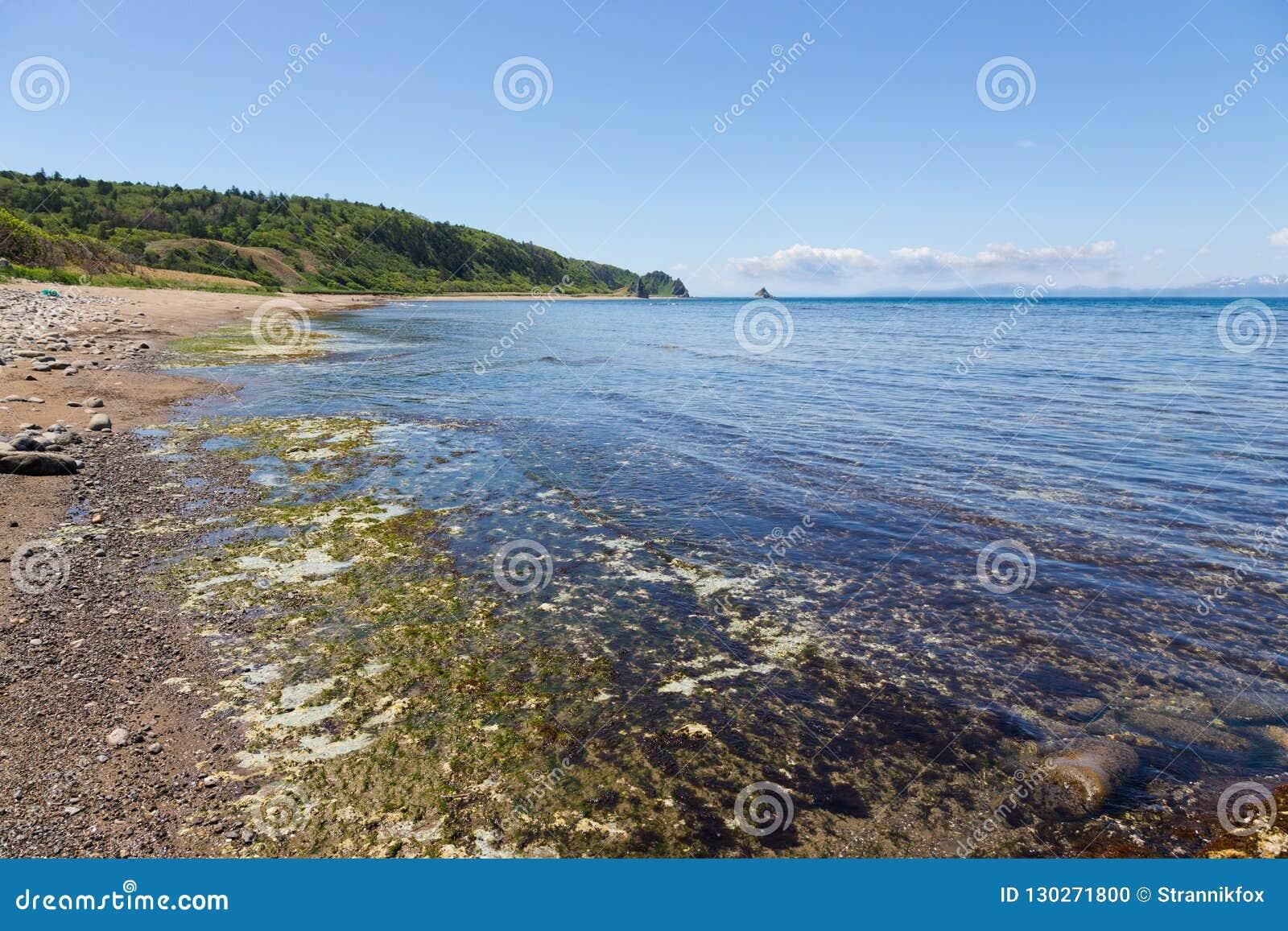 Udde Stolbchaty Udde på västkusten av ön av Kunashi