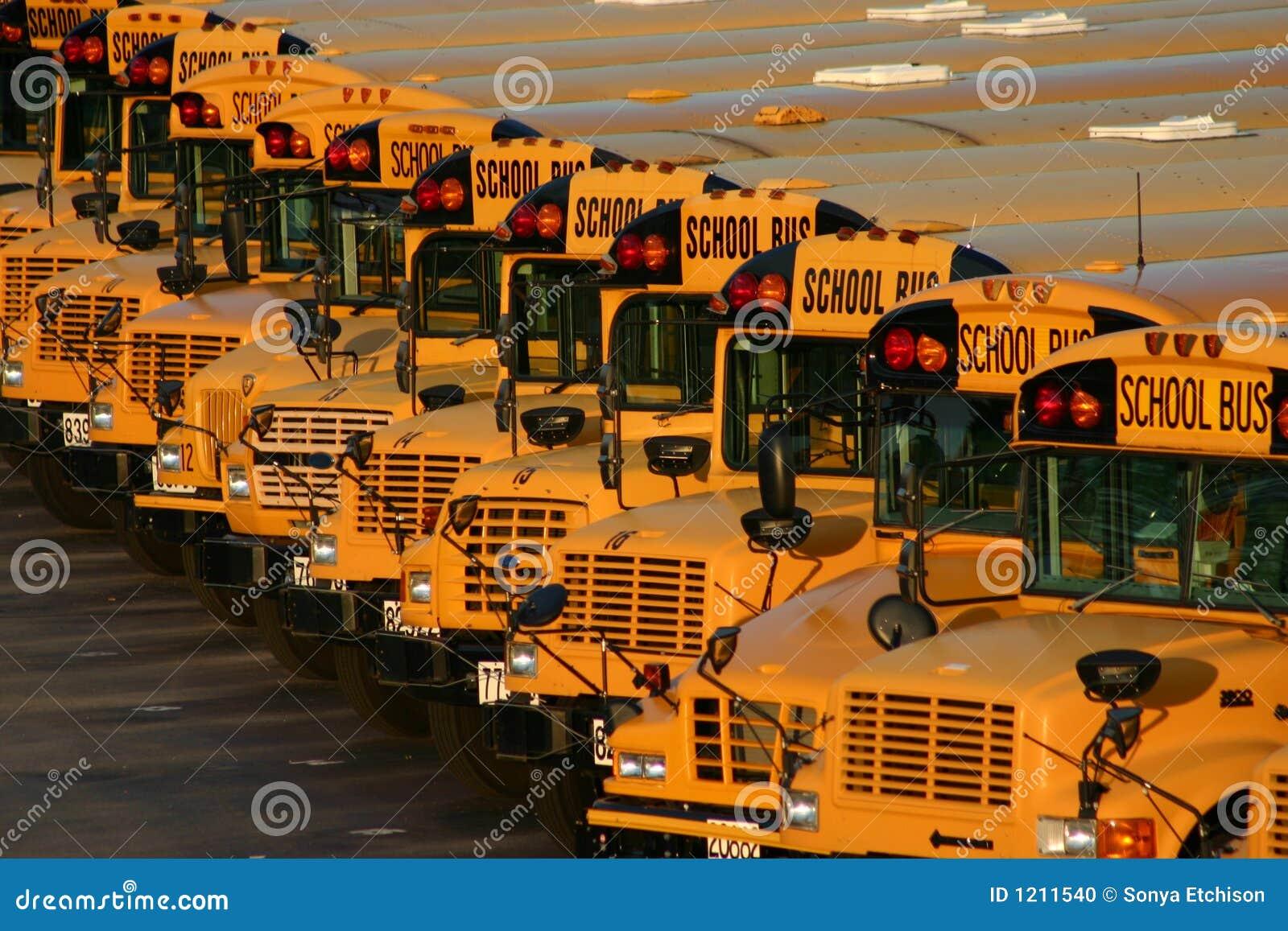 Udział autobus do szkoły