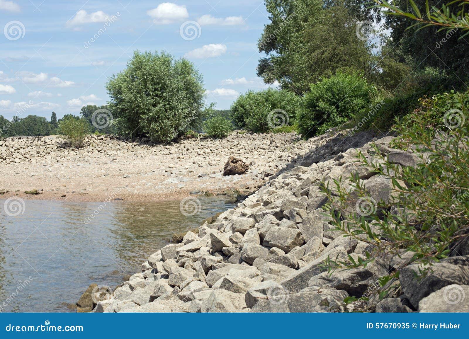 Ufer des Rheins (Rhein)