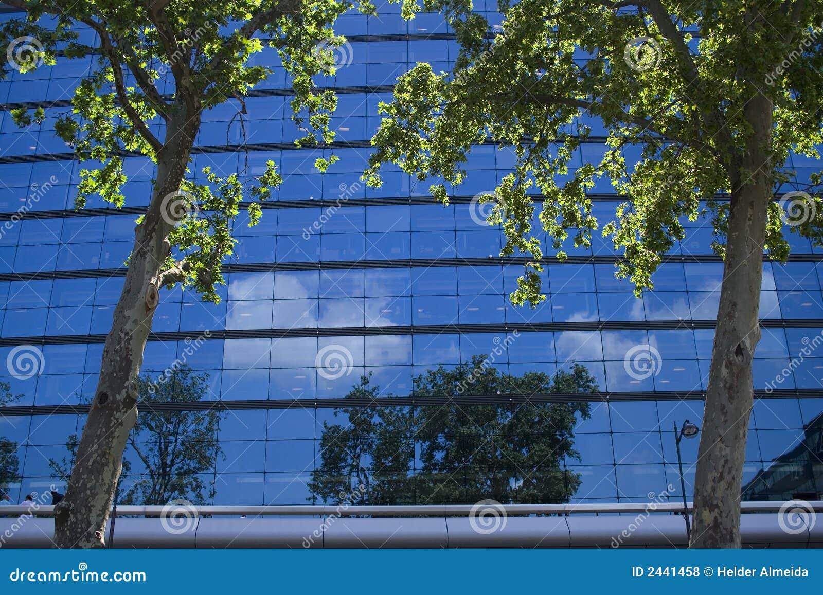 Ufficio fra gli alberi