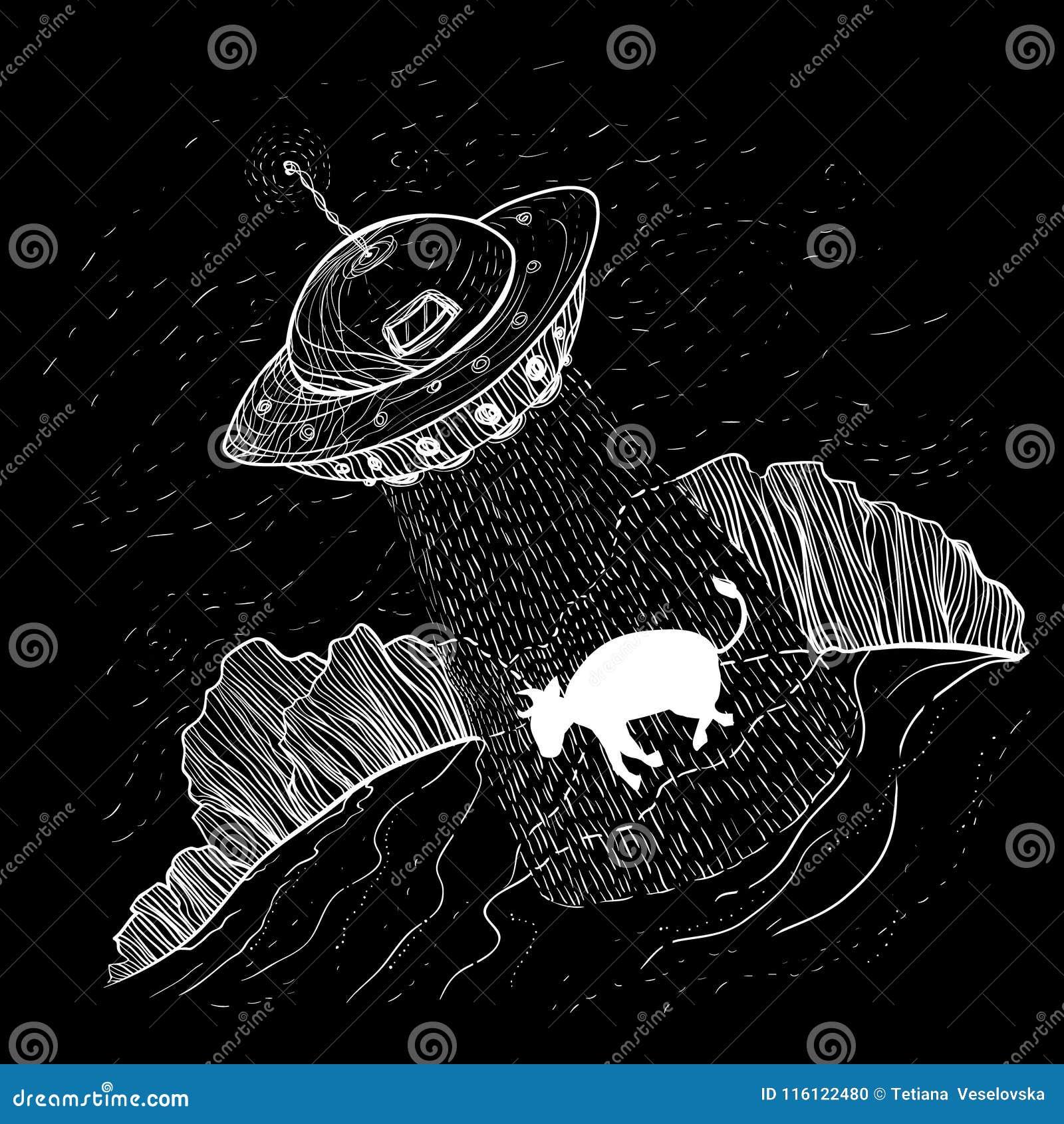 UFO obcy uprowadza, uprowdzają krowy na gospodarstwie rolnym, blisko lasowego d