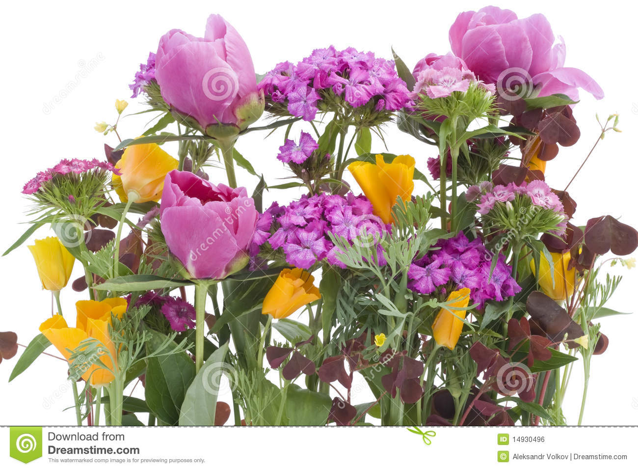 Ugly Bouquet Background Royalty Free Stock Image Image