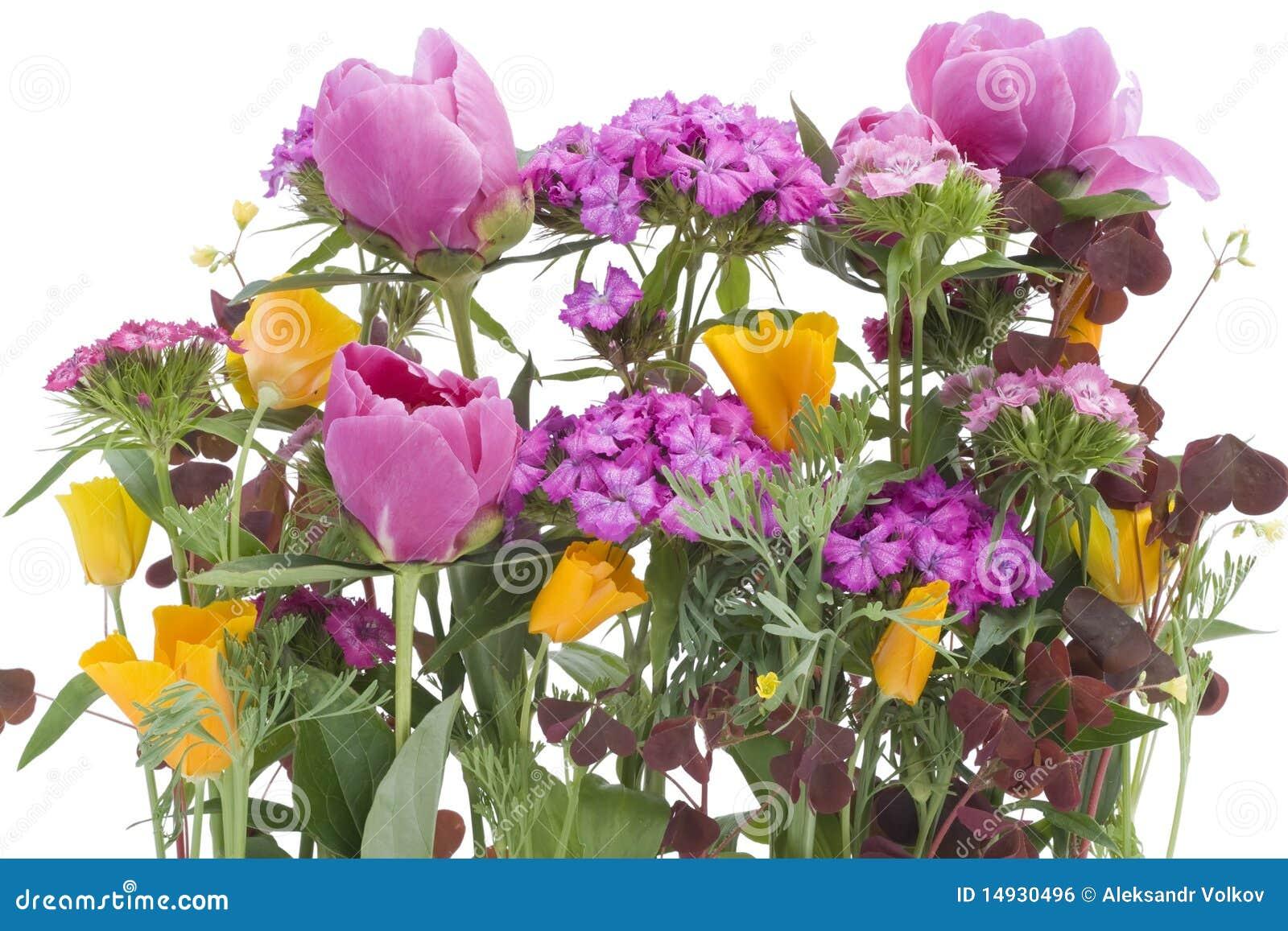 Ugly Bouquet Background Royalty Free Stock Image Image