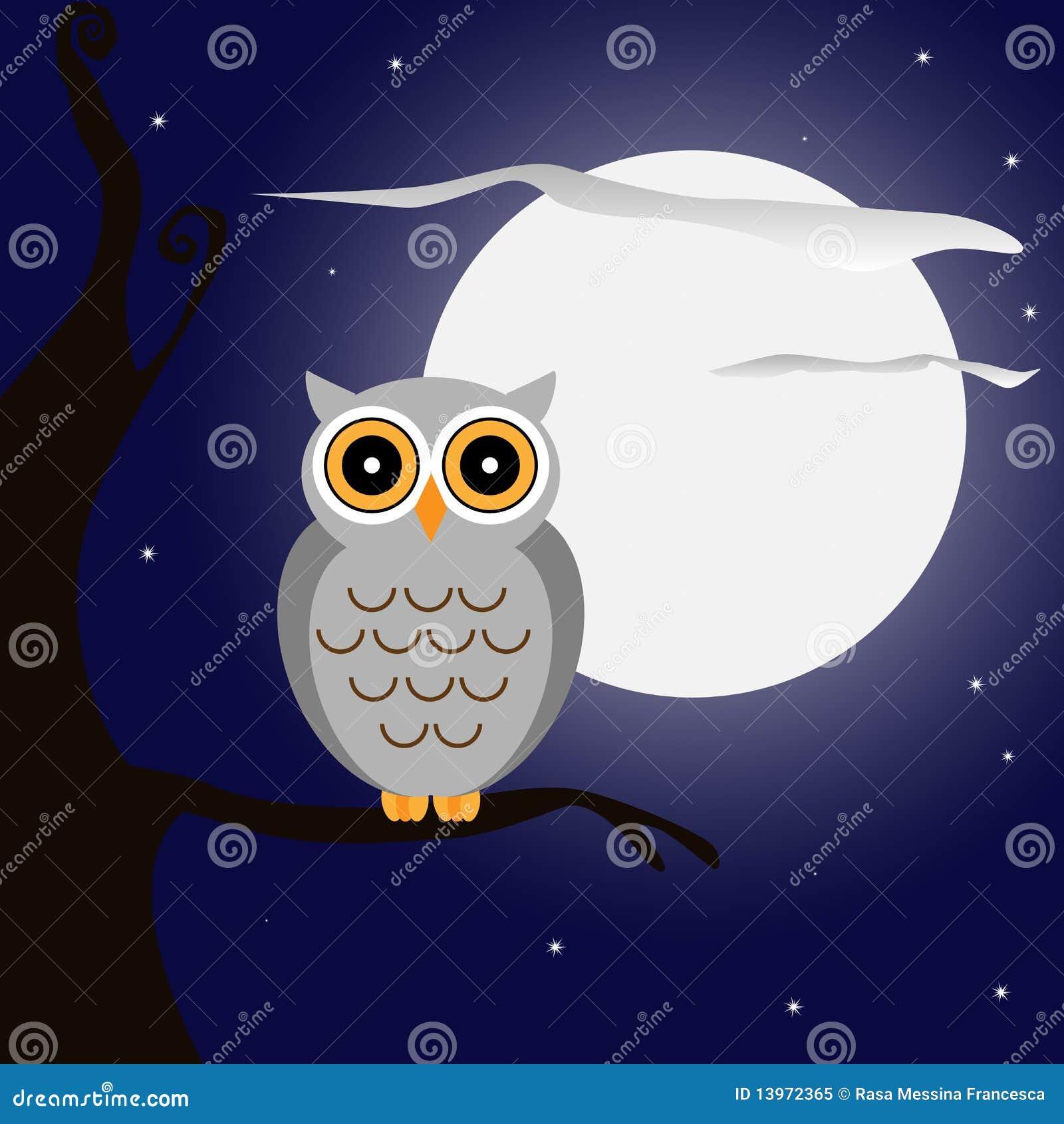 Uil bij nacht