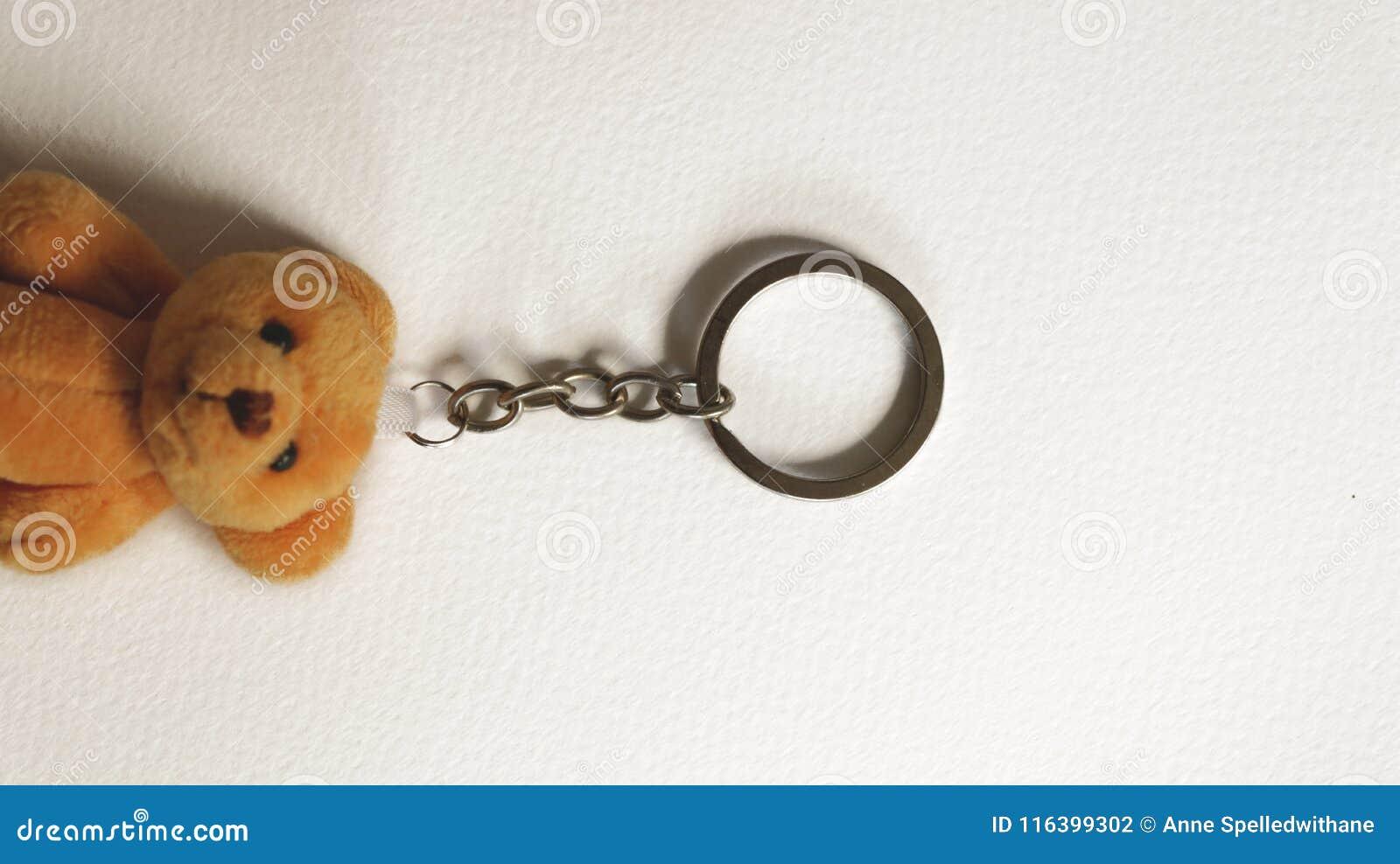 Uitstekend Metaal Keychain met Teddy Bear op Document Textuur