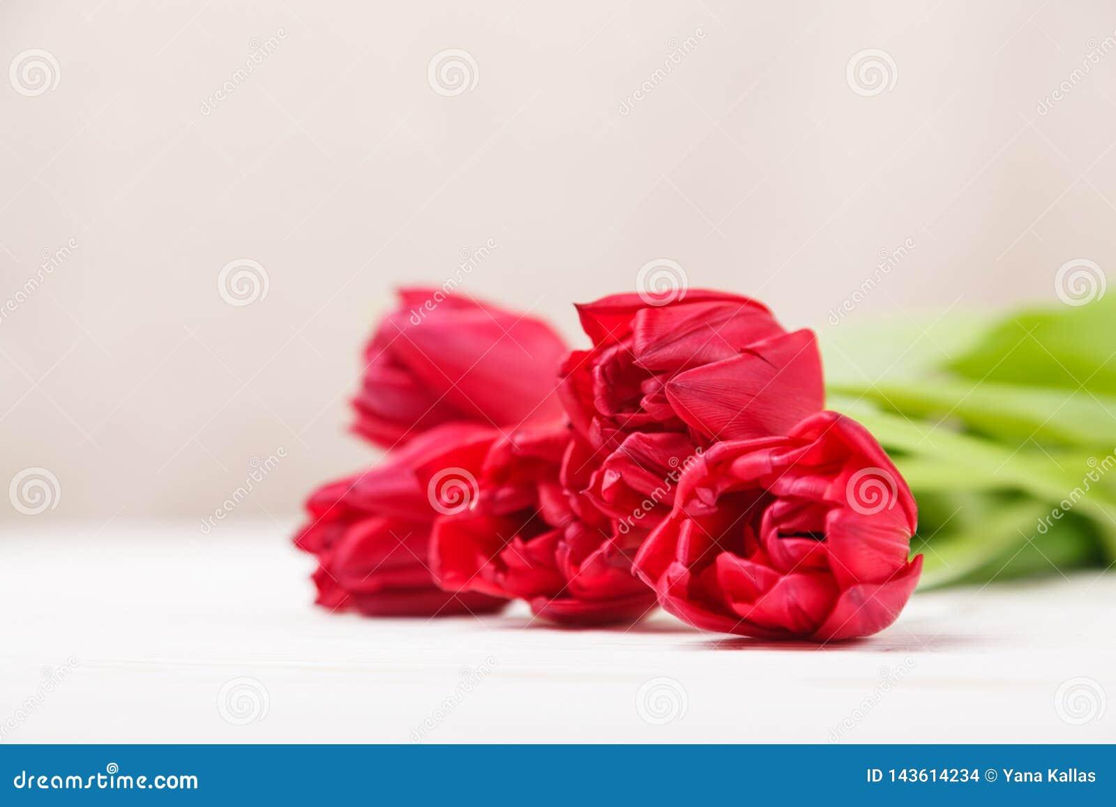 Uitstekend stilleven met een de lenteboeket van tulpen Het concept de Dag van de moeder, de dag van vrouwen Verfraai huis met blo