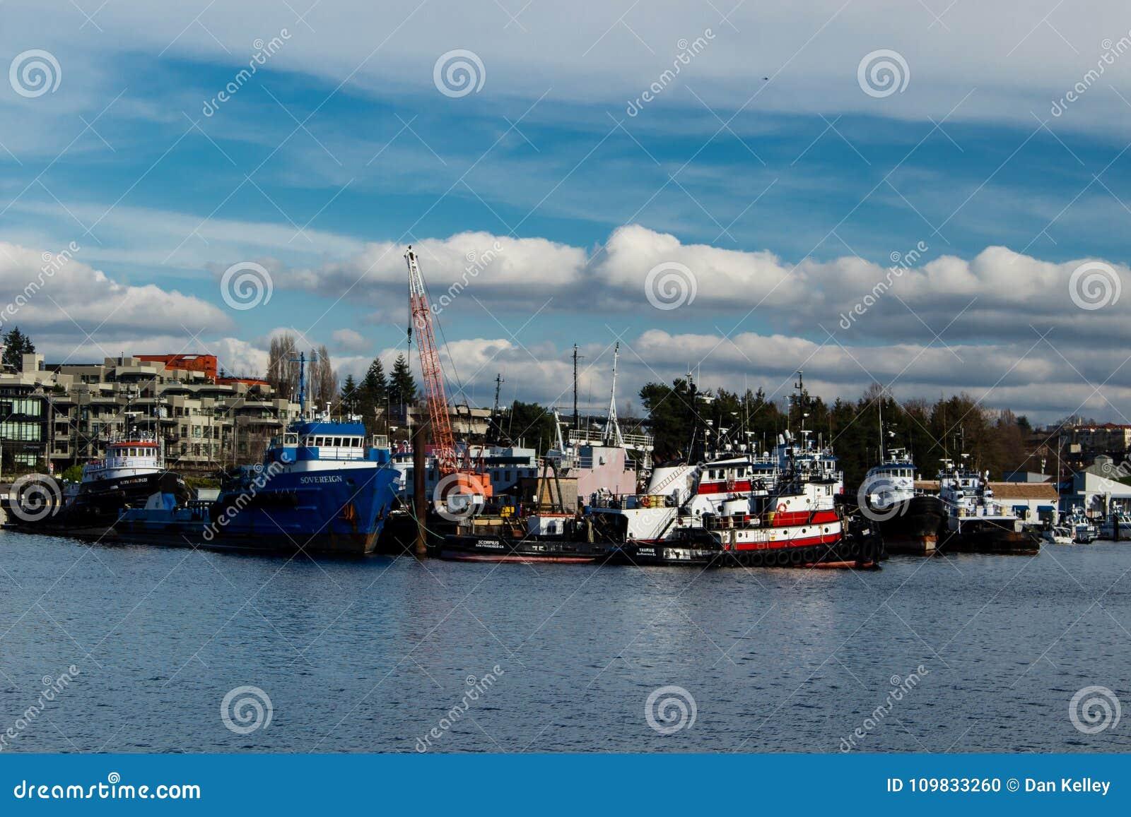 Uitstekende die Sleepboten in Salmon Bay Seattle Washington worden vastgelegd
