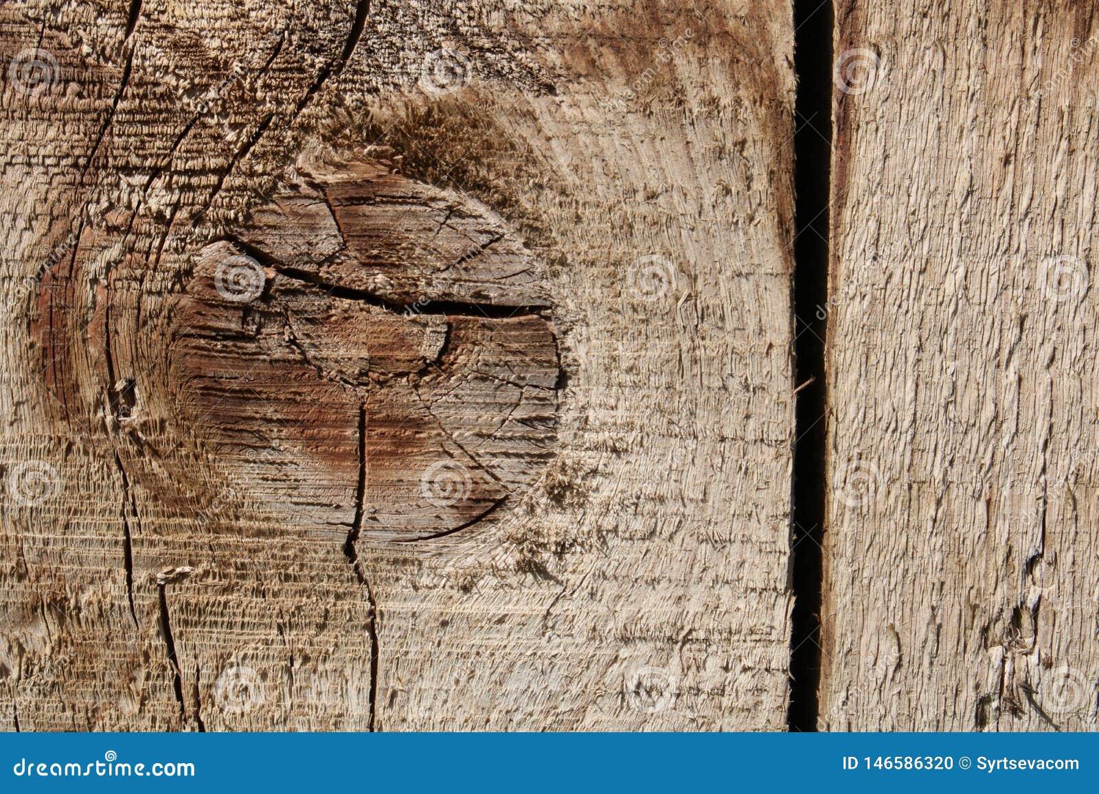 Uitstekende houten Raad met mooie textuur, close-up, met knoopelement en verticale barst