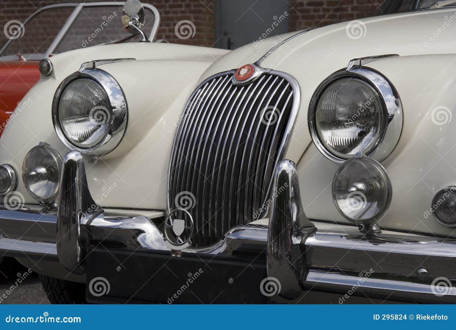 Uitstekende Jaguar - Voorzijde