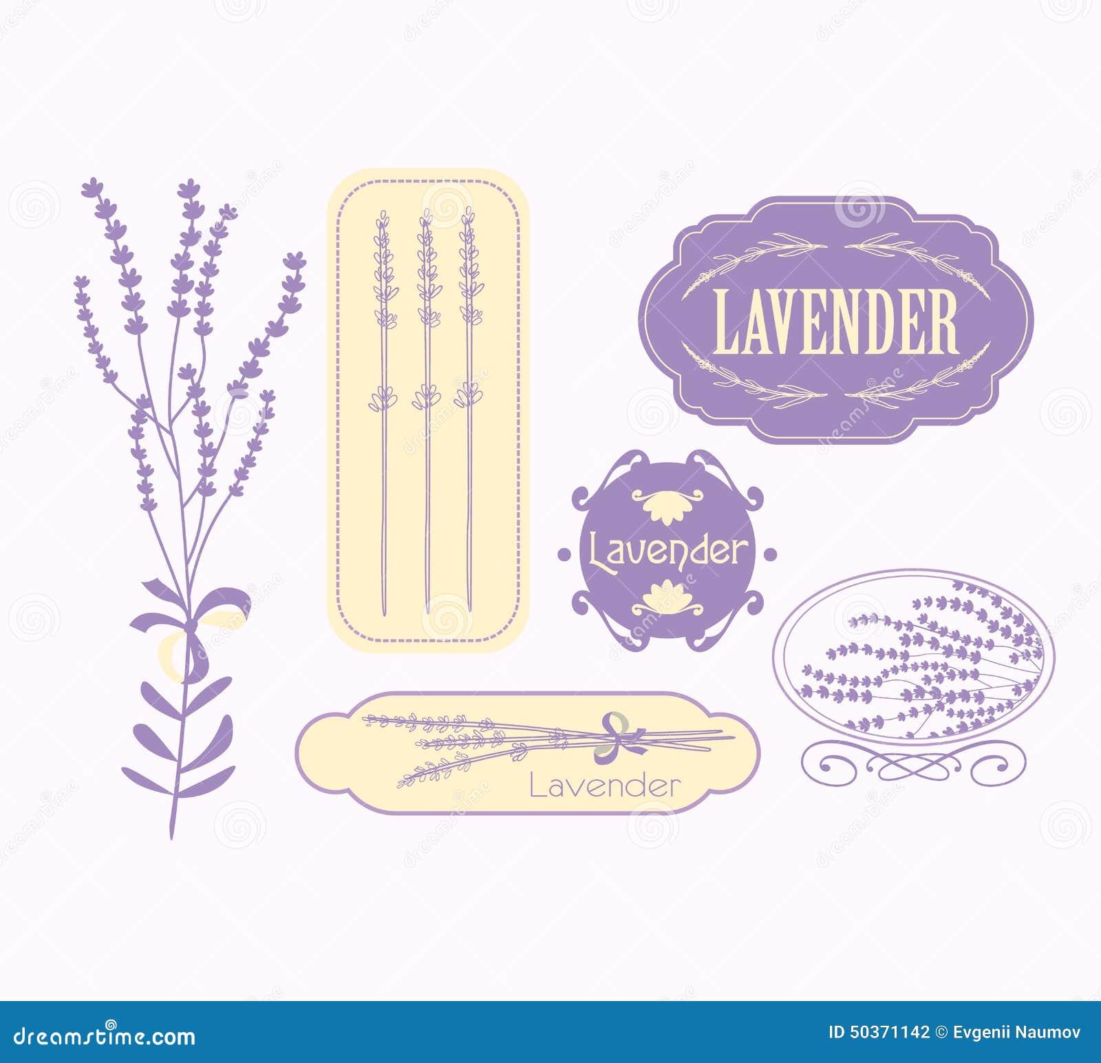 Uitstekende lavendelachtergrond, aromatherapy en kuuroord