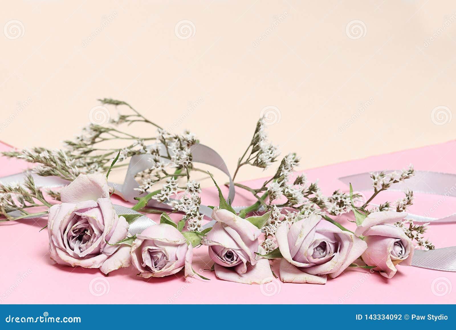 Uitstekende rozen en witte bloemen op de roze achtergrond